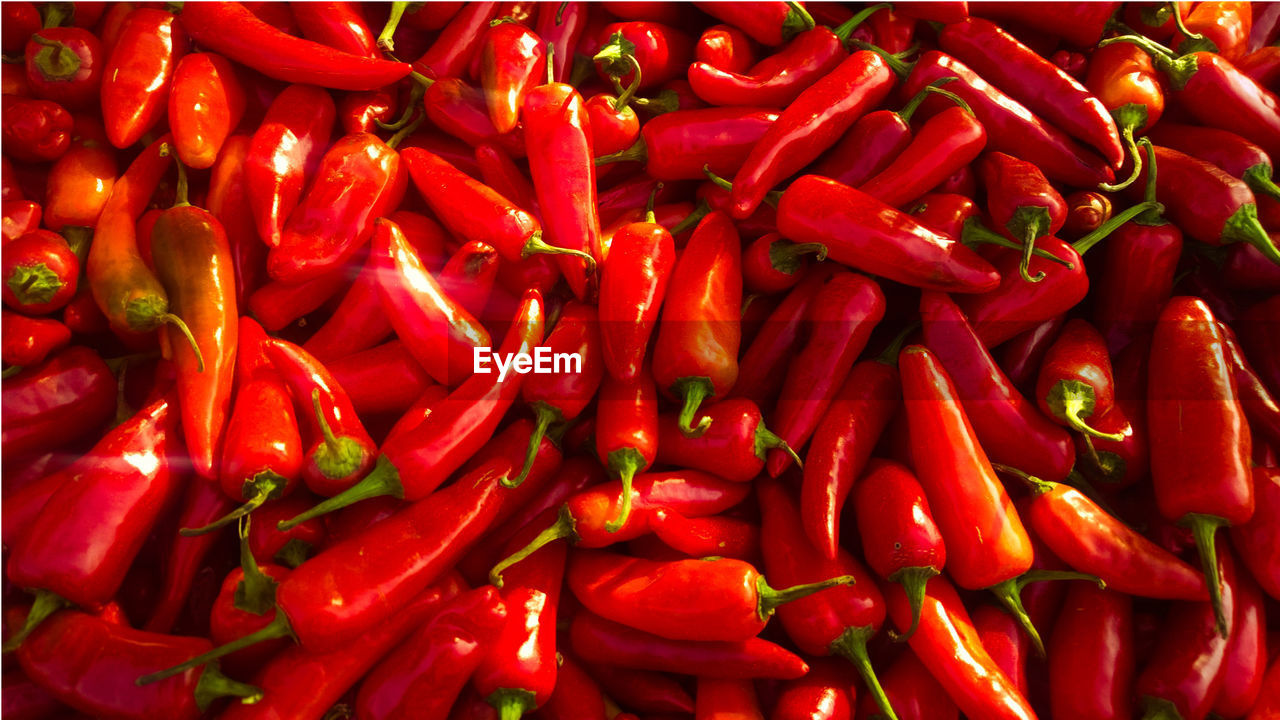 red, food and drink, vegetable, spice, pepper, food, backgrounds, full frame, chili pepper, large group of objects, abundance, red chili pepper, market, freshness, for sale, retail, no people, ingredient, high angle view, day