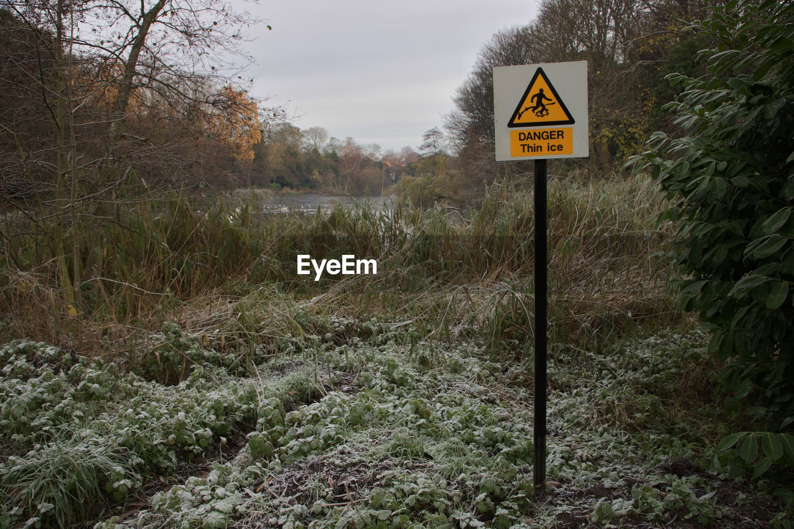 Danger sign amongst the frost covered plants
