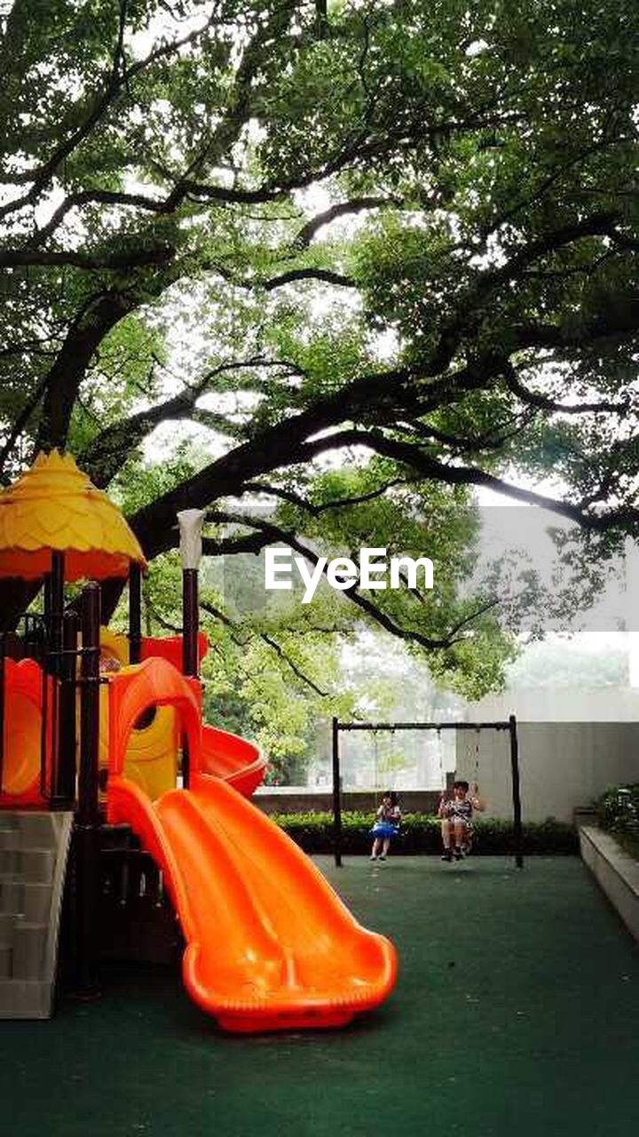 tree, playground, growth, day, outdoors, park - man made space, outdoor play equipment, nature, branch, no people, beauty in nature, sky