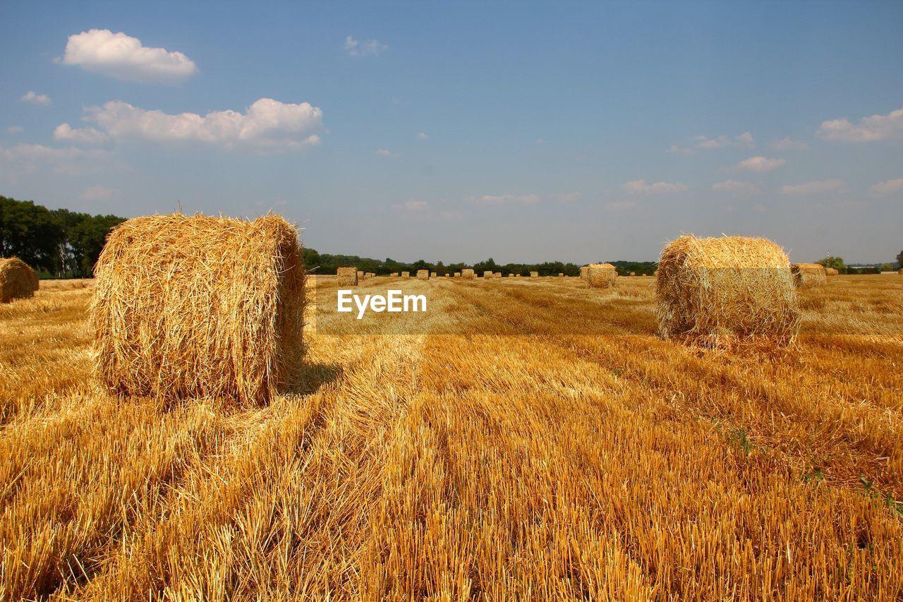 Hay Bale On Field Against Sky