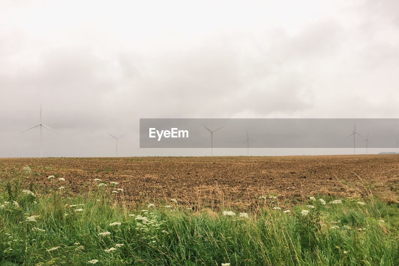 environmental conservation, wind turbine, wind power, alternative energy, renewable energy, fuel and power generation, windmill, industrial windmill, field, rural scene, nature, outdoors, day, landscape, no people, grass, sky, beauty in nature, traditional windmill, technology