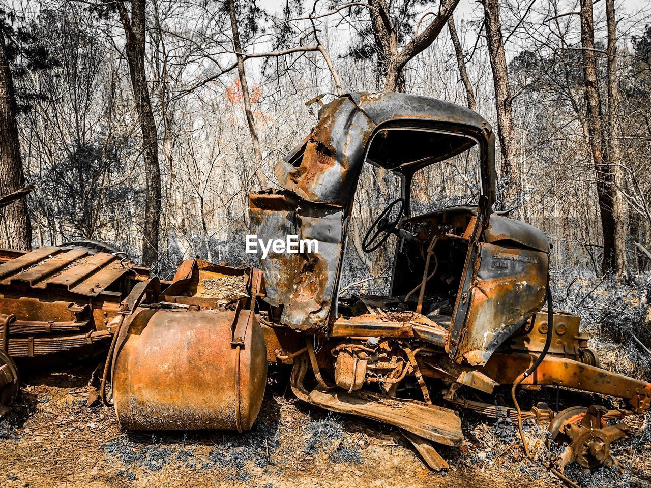 View of abandoned vehicle in forest