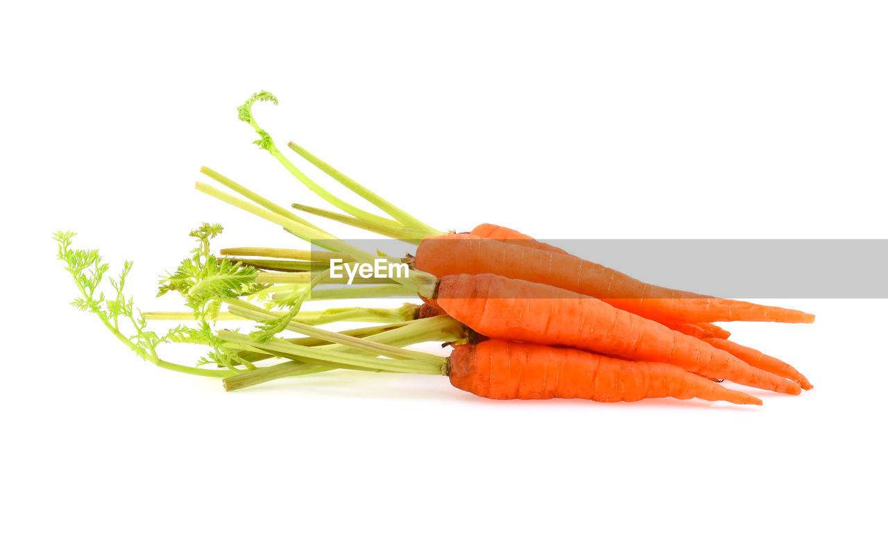 studio shot, white background, root vegetable, carrot, vegetable, freshness, indoors, wellbeing, food, food and drink, still life, raw food, healthy eating, green color, cut out, close-up, copy space, group of objects, no people, orange color, organic