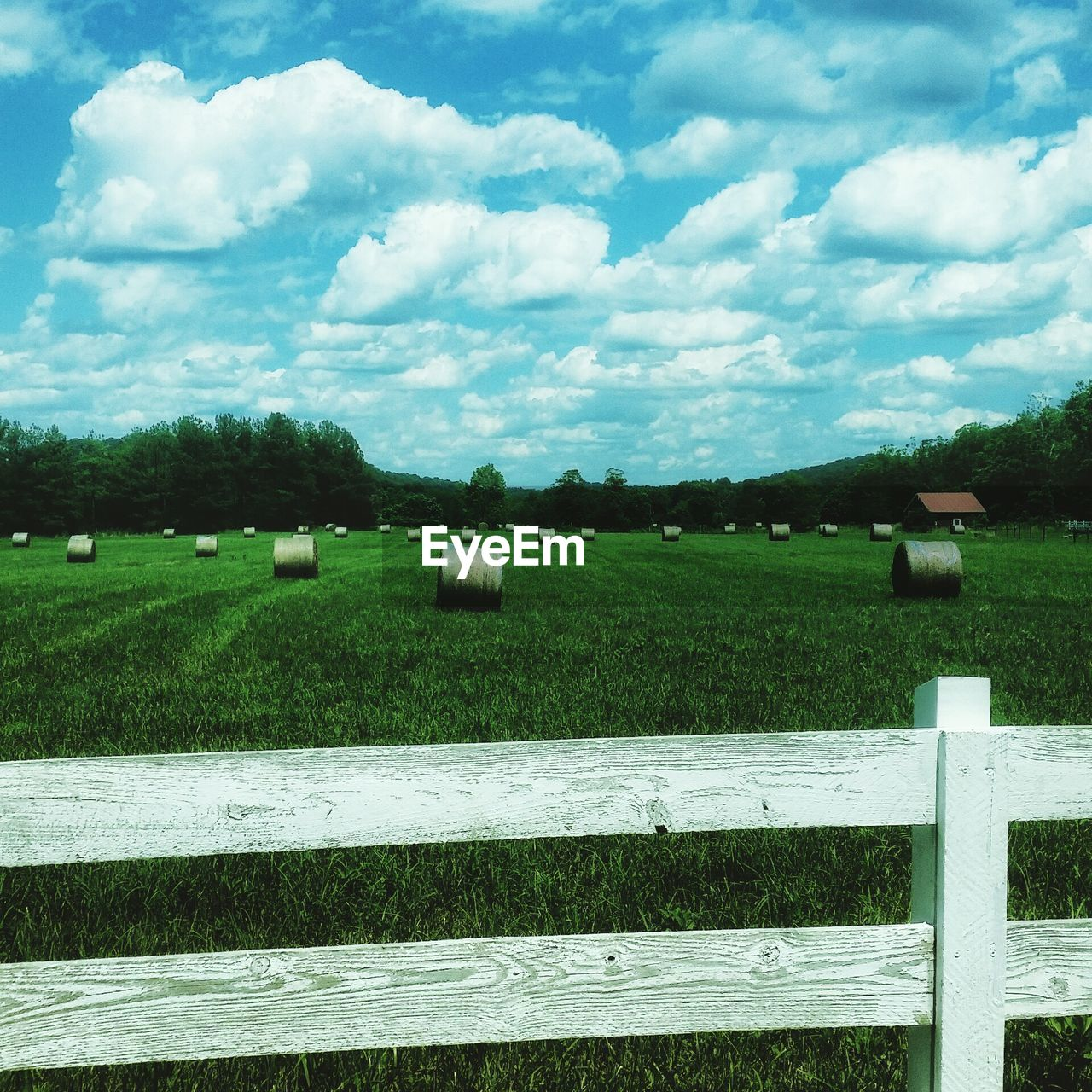 Hay Bales On Grassy Field At Farm Against Cloudy Sky
