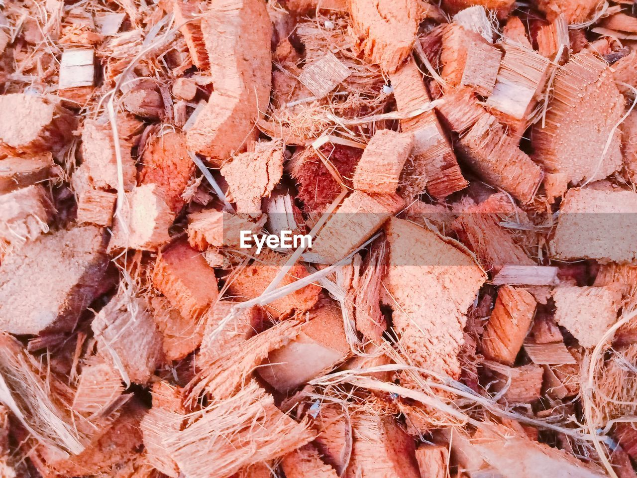 full frame, backgrounds, no people, day, large group of objects, abundance, brown, food and drink, nature, stack, food, high angle view, close-up, still life, outdoors, tree, heap, chopped, meat, freshness