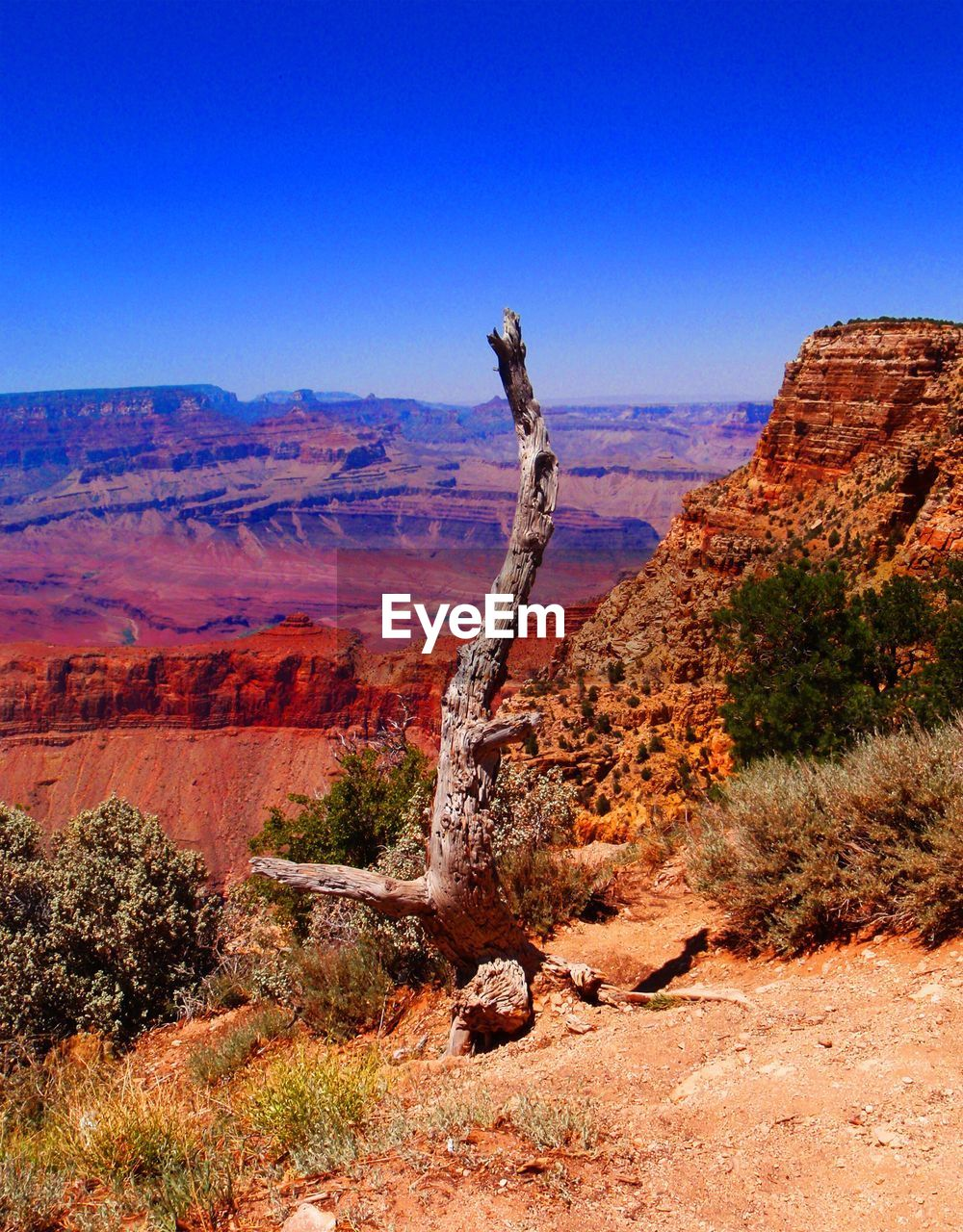 View Of Grand Canyon National Park Against Clear Blue Sky