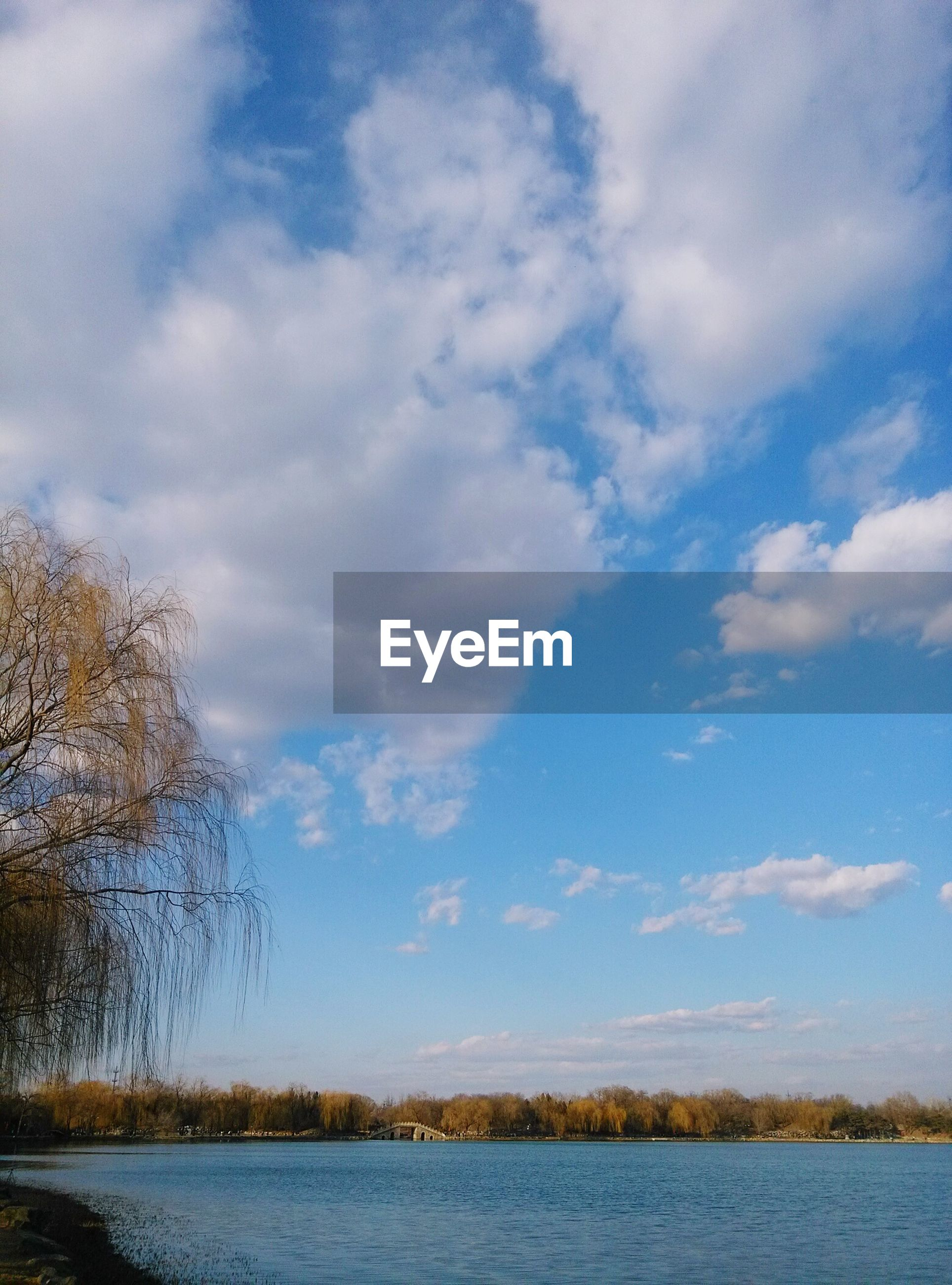 sky, cloud - sky, nature, tree, no people, beauty in nature, tranquility, water, outdoors, scenics, day