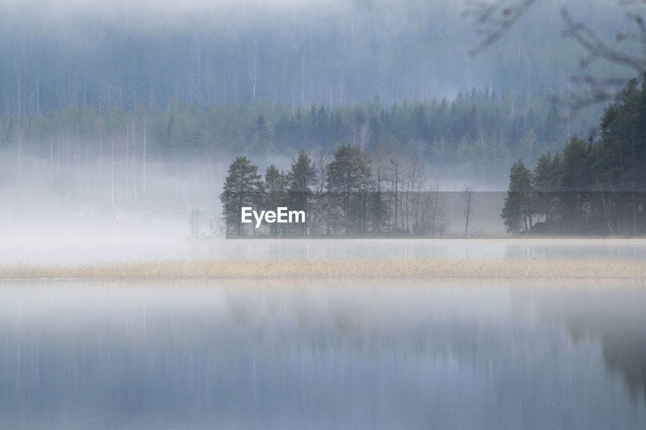 View Of Lake In Foggy Weather