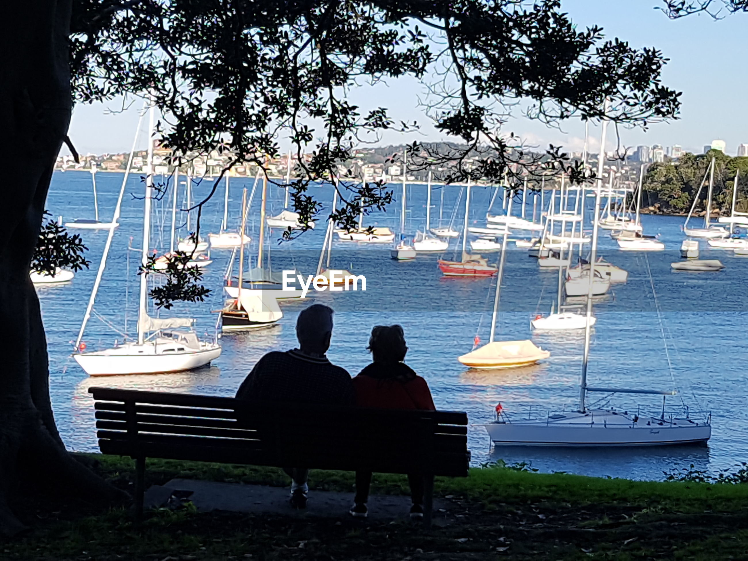 Rear view of people sitting on bench against yachts