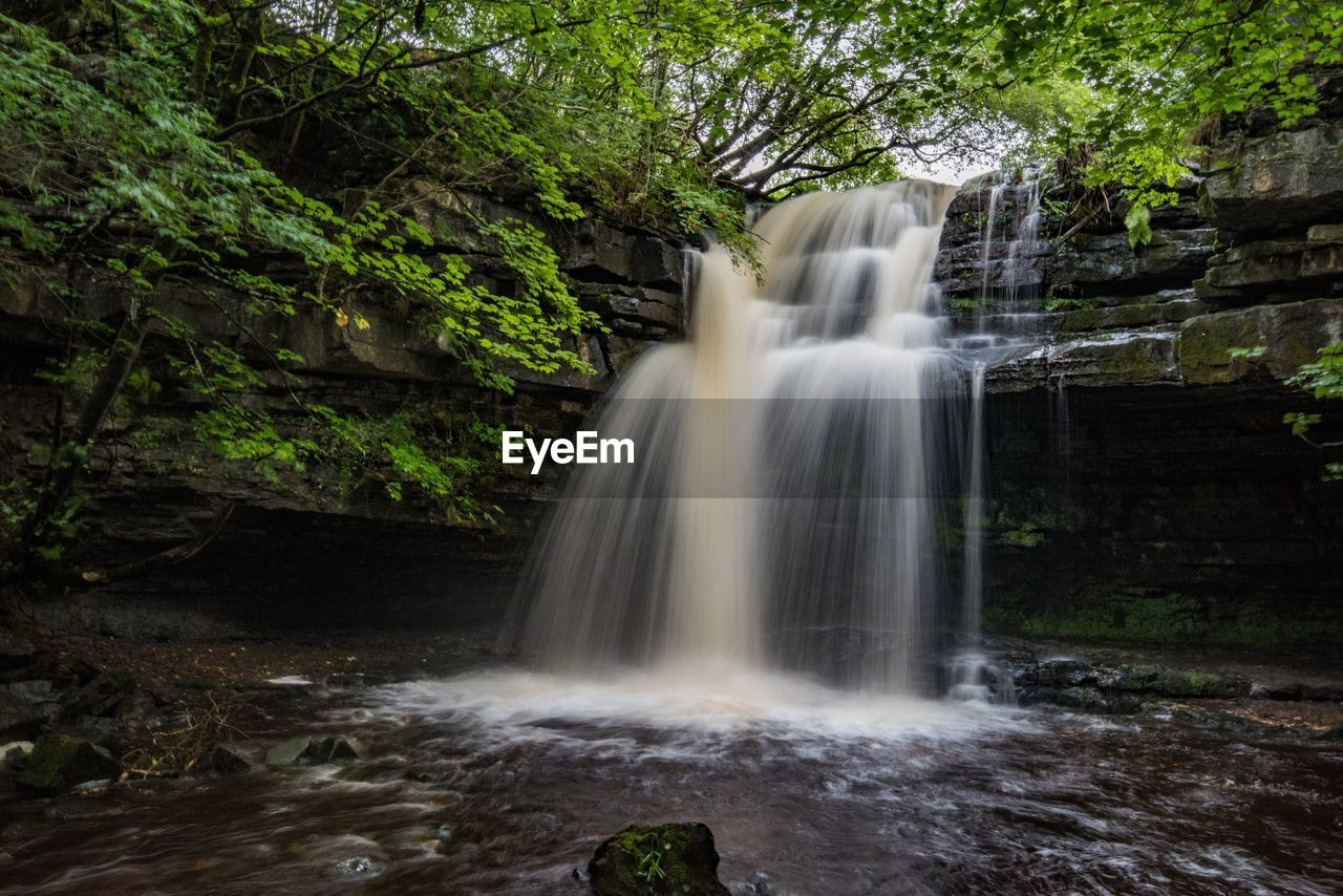 motion, blurred motion, waterfall, long exposure, forest, plant, scenics - nature, tree, water, beauty in nature, nature, land, flowing water, environment, no people, rock - object, rock, solid, power in nature, flowing, outdoors, rainforest, falling water, purity