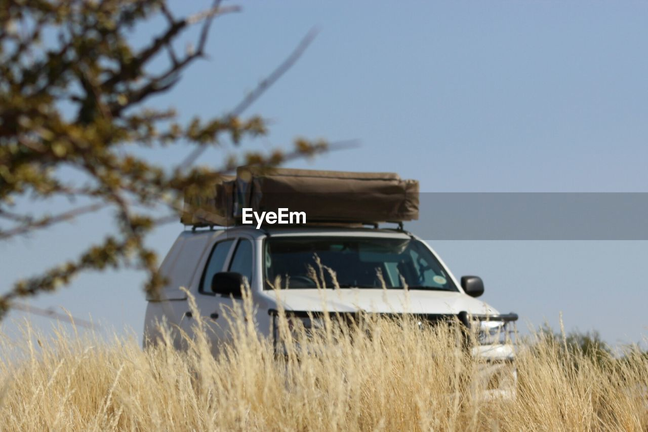 Sport Utility Vehicle On Grassy Field