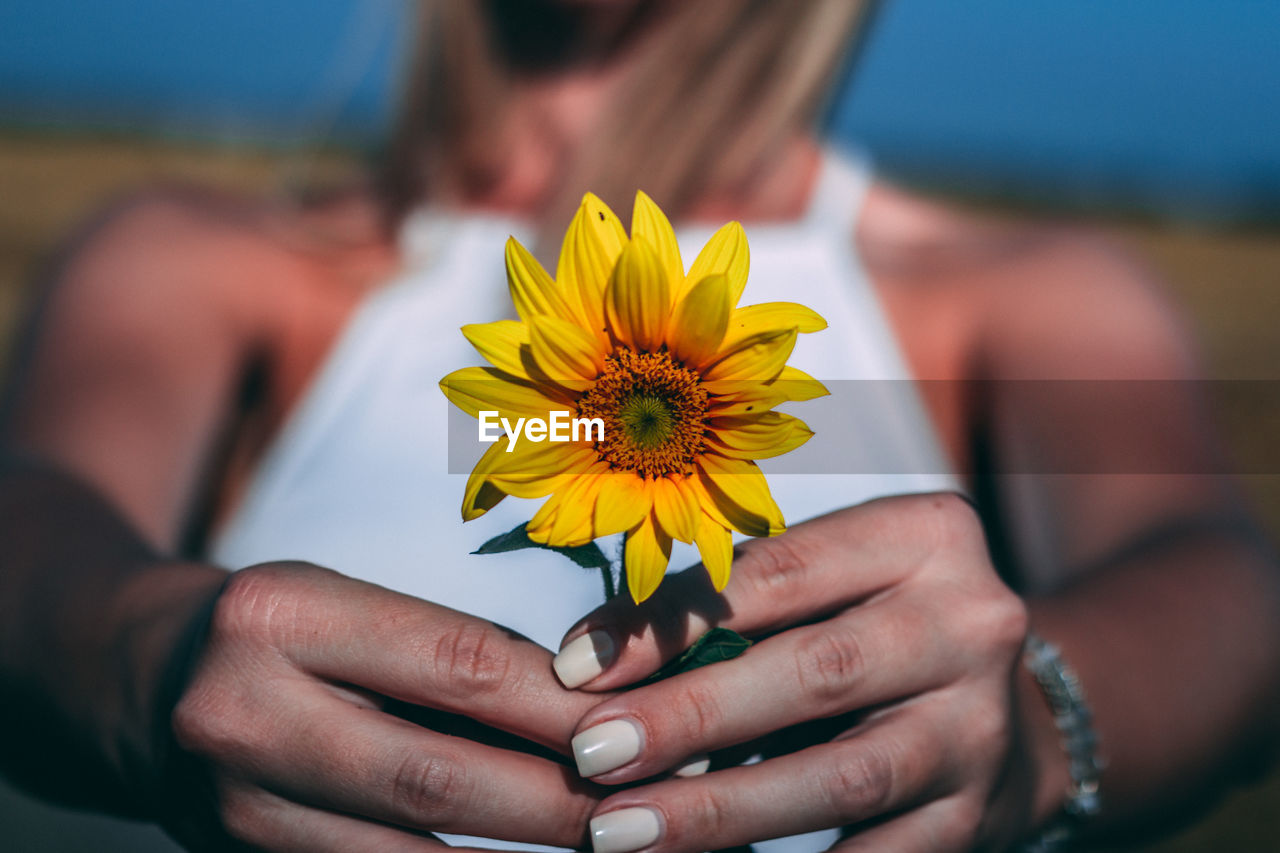 freshness, flowering plant, vulnerability, yellow, flower, fragility, human hand, hand, holding, focus on foreground, beauty in nature, flower head, real people, inflorescence, close-up, lifestyles, petal, one person, midsection, nature, outdoors, pollen, finger