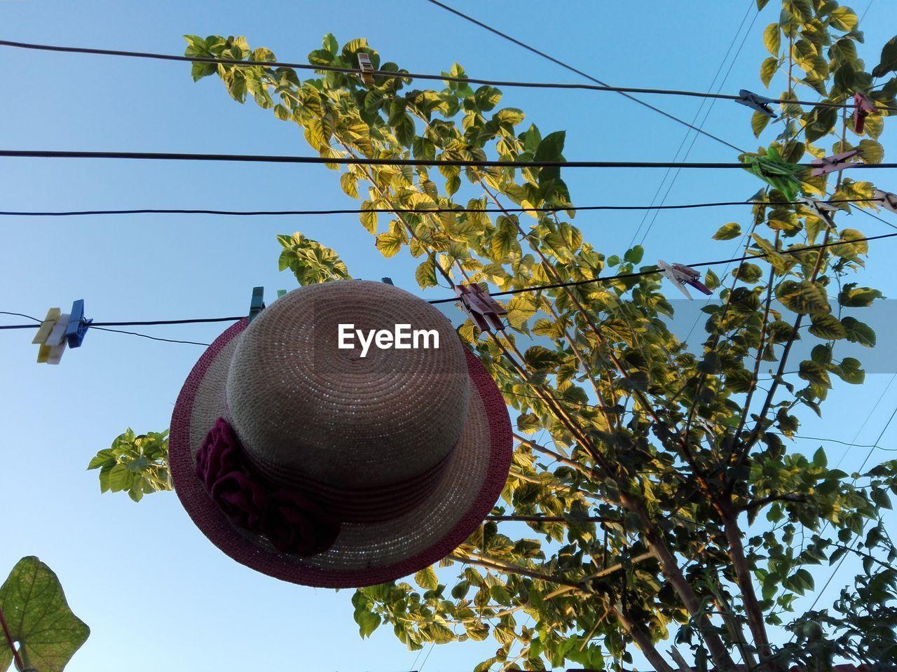 Low Angle View Of Hat Hanging On Clothesline Against Clear Sky