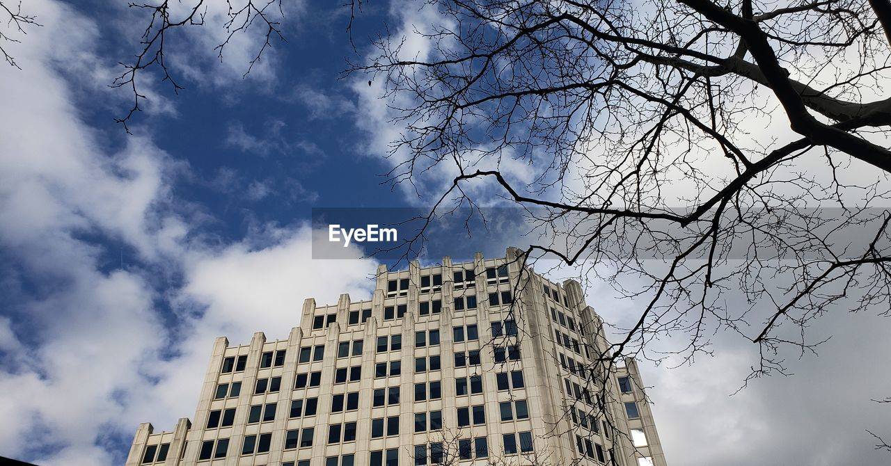 building exterior, sky, built structure, cloud - sky, architecture, low angle view, building, nature, tree, no people, day, branch, city, outdoors, bare tree, plant, office building exterior, office, tall - high, window, skyscraper, apartment