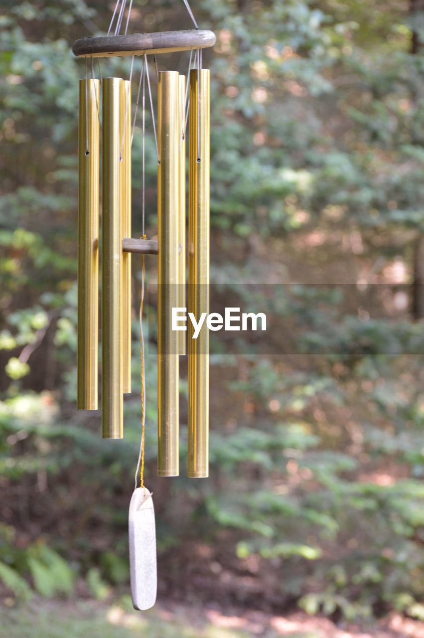 hanging, focus on foreground, no people, plant, tree, day, nature, wood - material, close-up, wind chime, yellow, outdoors, decoration, built structure, growth, belief, architecture, building, place of worship, land, stick - plant part