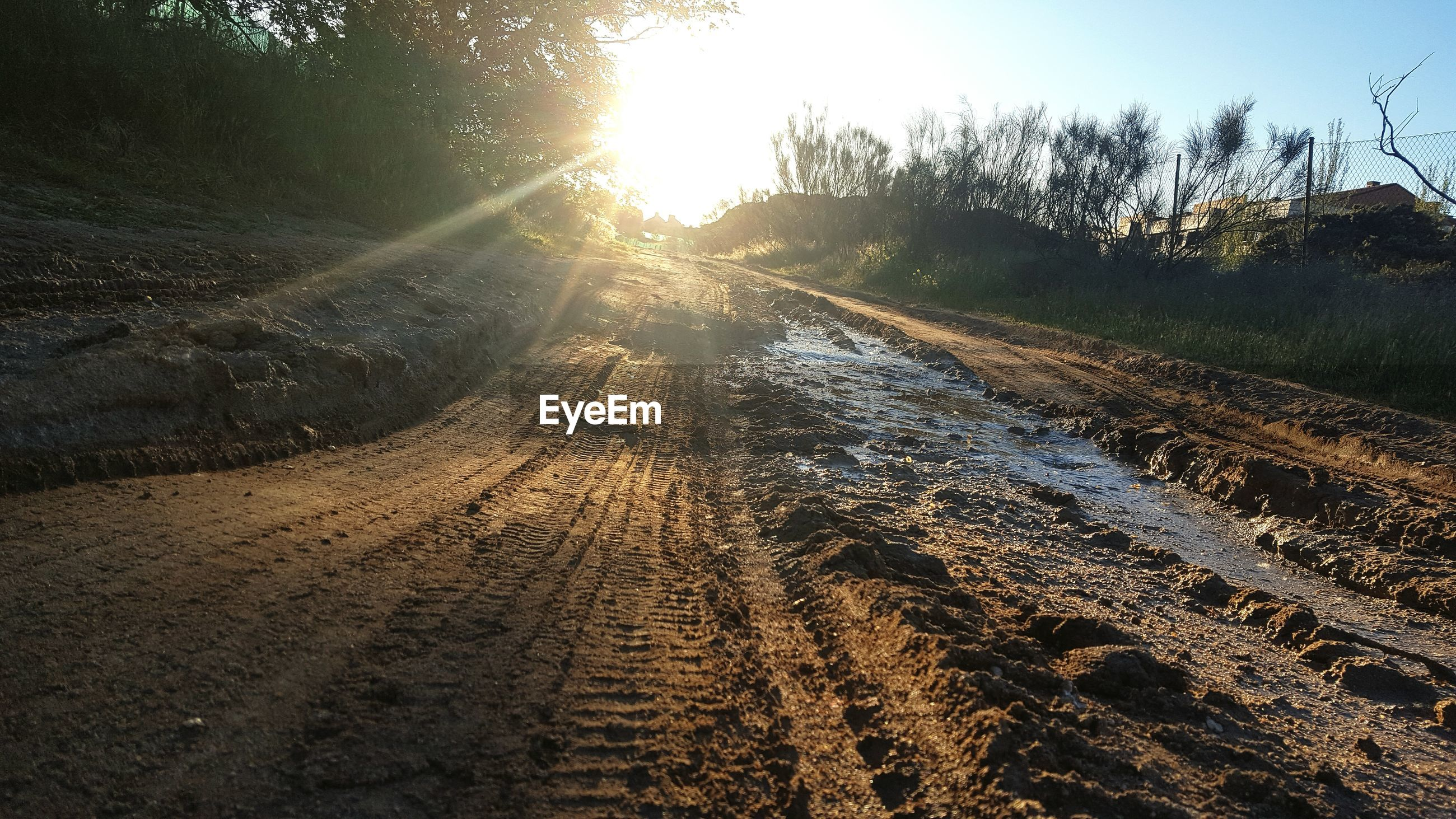 Surface level of dirt road along landscape