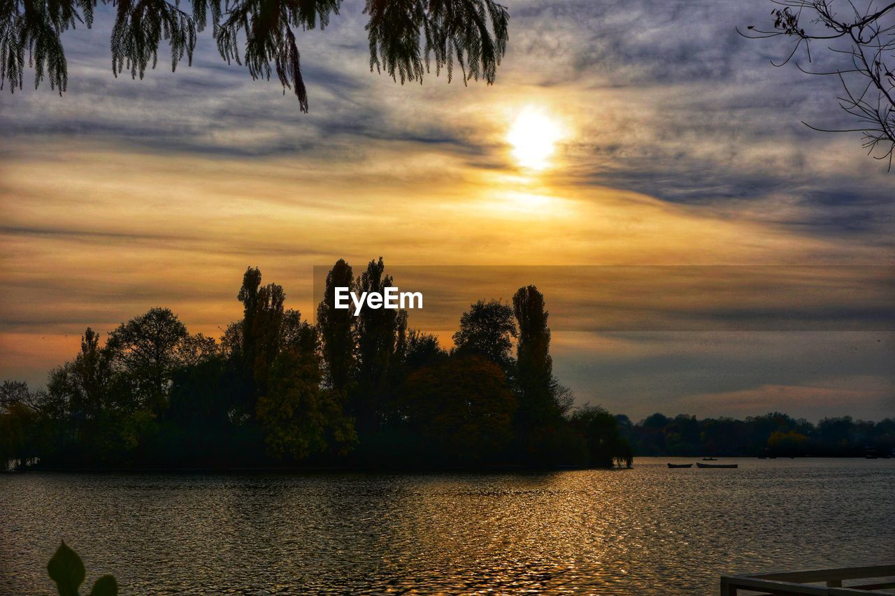 tree, sunset, water, nature, sky, beauty in nature, tranquility, scenics, lake, tranquil scene, cloud - sky, no people, silhouette, outdoors, growth, day
