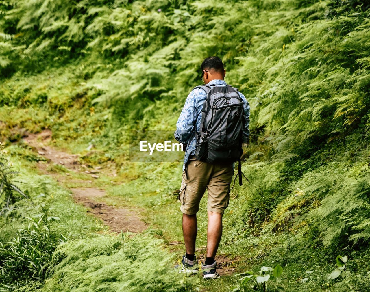 rear view, hiking, walking, backpack, adventure, full length, real people, casual clothing, forest, nature, men, day, one person, beauty in nature, outdoors, people, adult, adults only