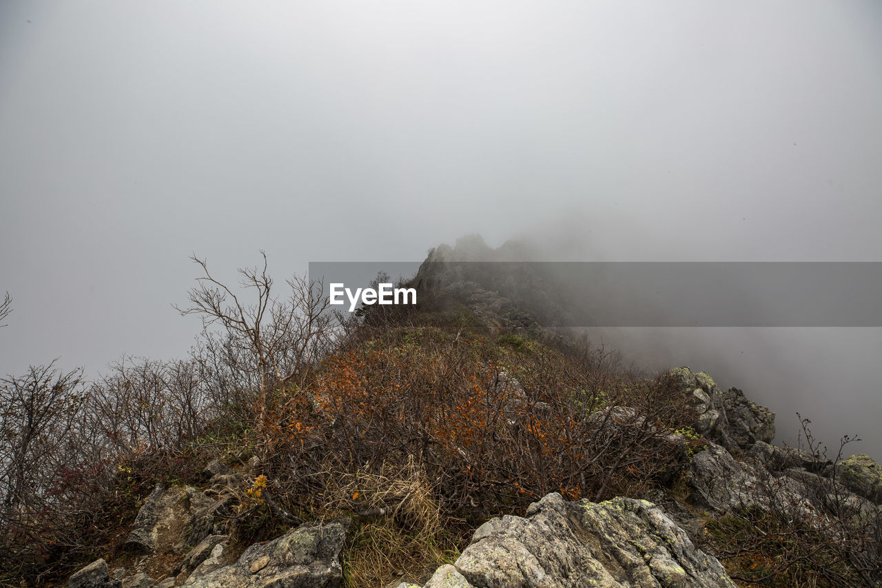 fog, mountain, beauty in nature, tranquility, sky, tranquil scene, scenics - nature, nature, non-urban scene, no people, rock, rock - object, plant, solid, day, cold temperature, environment, winter, idyllic, outdoors, mountain peak, hazy