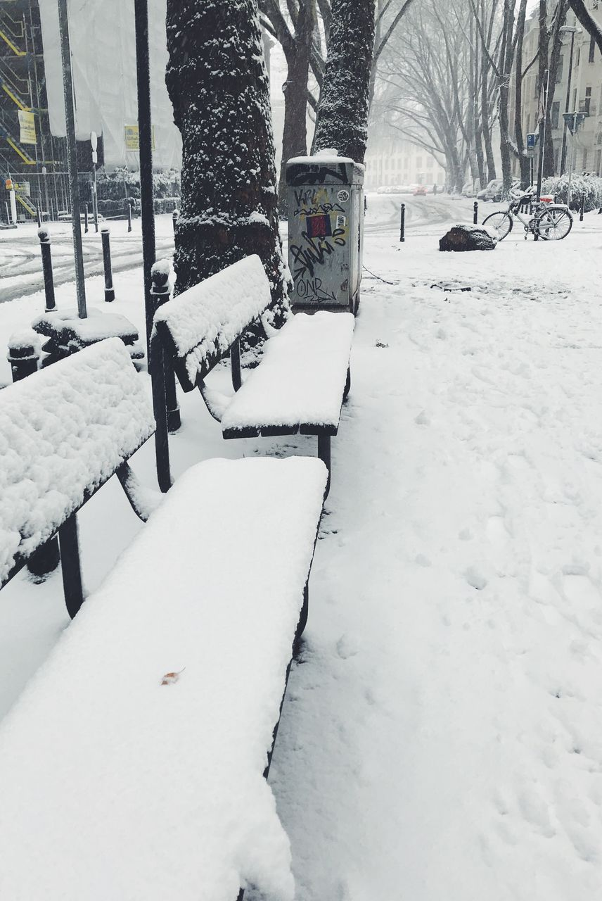 snow, winter, cold temperature, weather, white color, tree, nature, outdoors, bare tree, day, snowing, no people