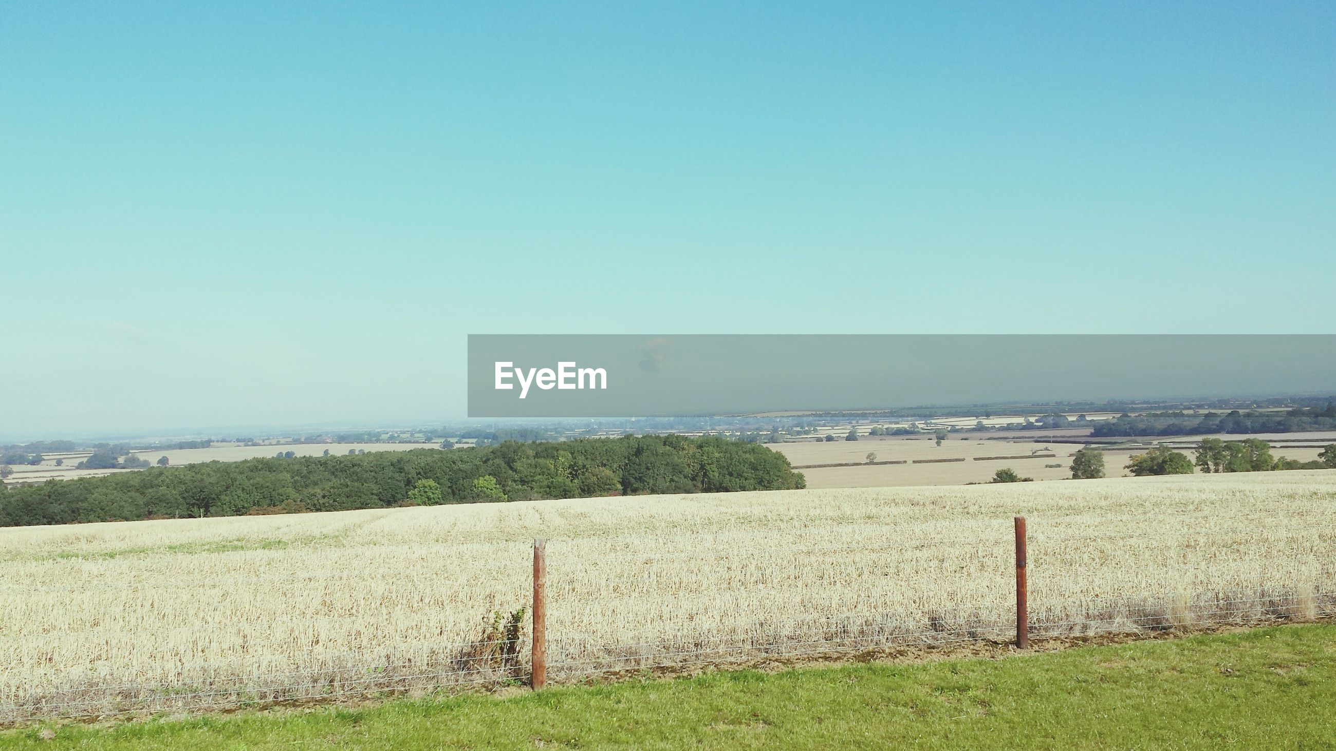 clear sky, copy space, landscape, field, blue, tranquil scene, tranquility, grass, rural scene, scenics, nature, beauty in nature, horizon over land, agriculture, day, built structure, sky, outdoors, no people, building exterior