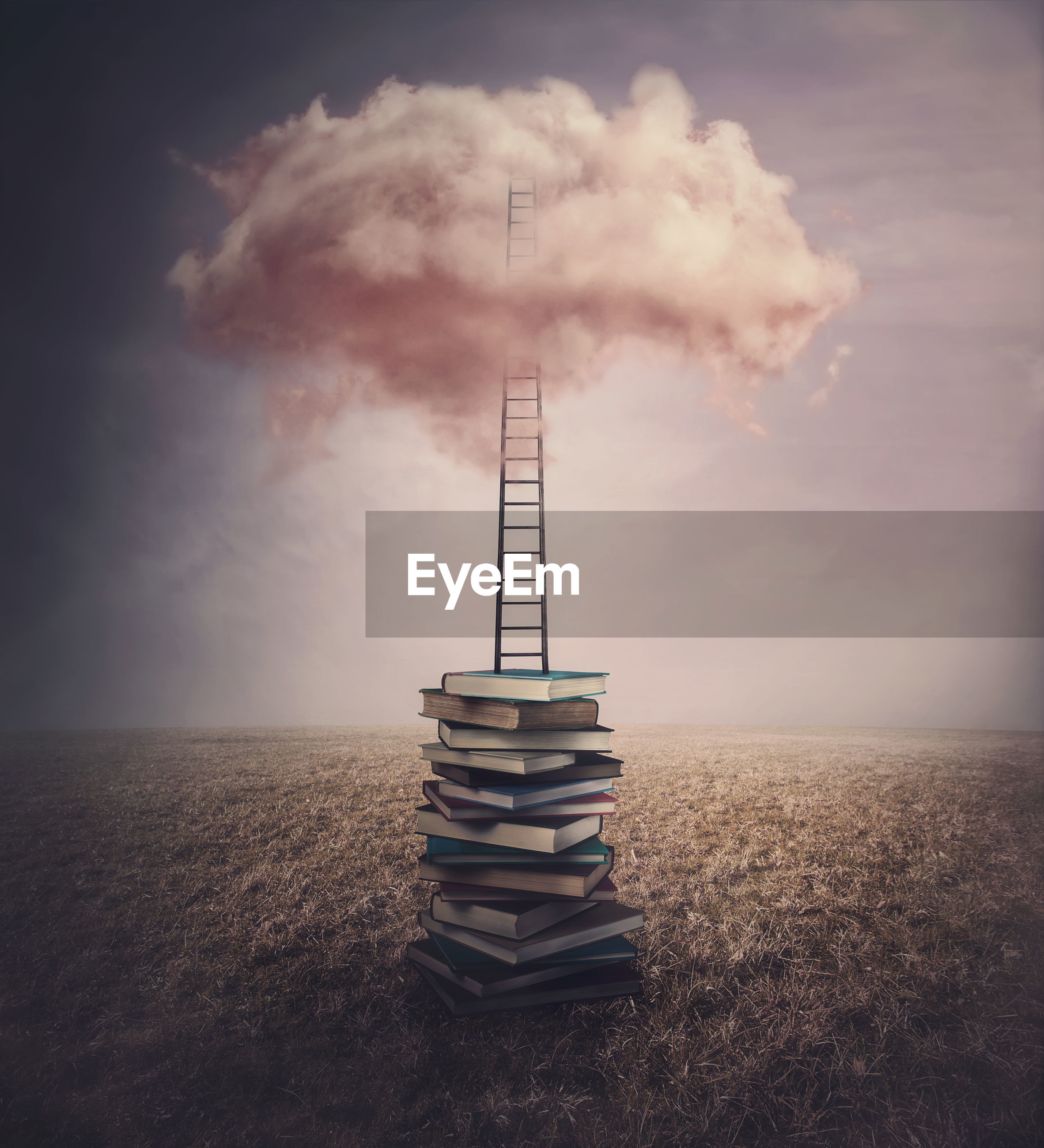 Books pile in the middle of an open meadow, and a ladder or stairway leading up to a pink cloud