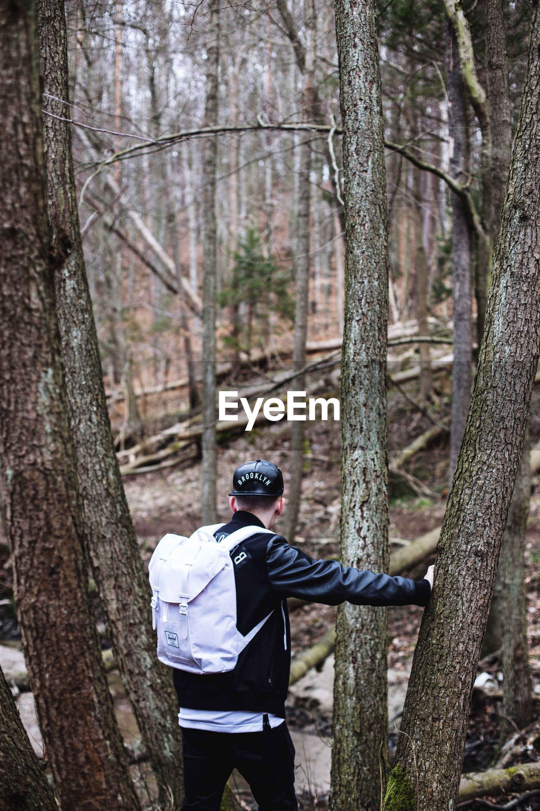 tree, tree trunk, forest, lifestyles, leisure activity, rear view, men, branch, full length, woodland, casual clothing, bare tree, nature, day, holding, standing, transportation, wood - material