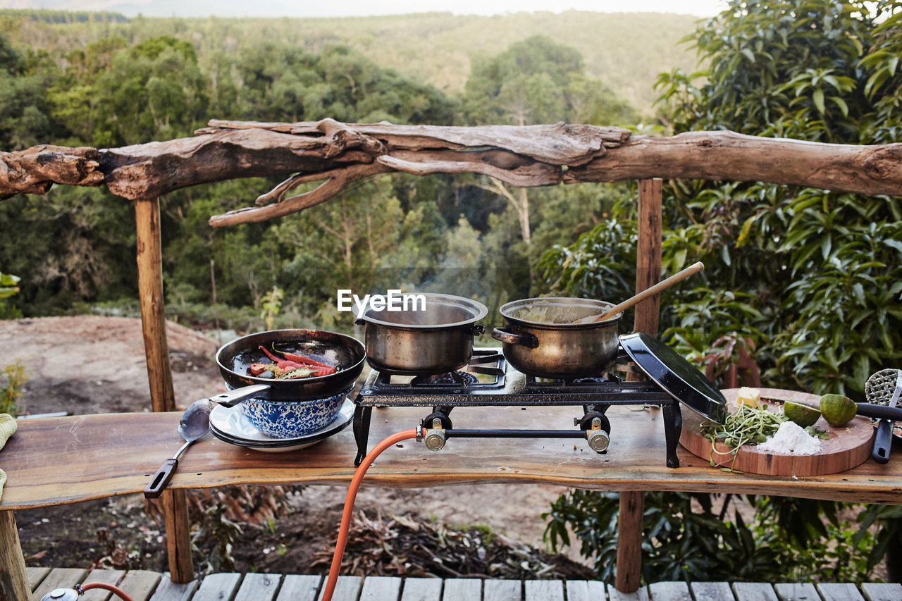 Food Cooking On Stove By Ingredients On Table Against Forest