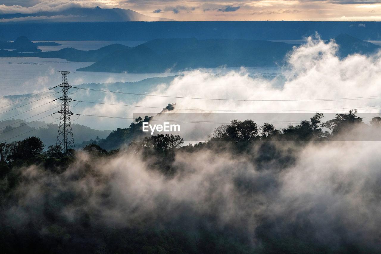 Fog Covered Trees During Sunrise