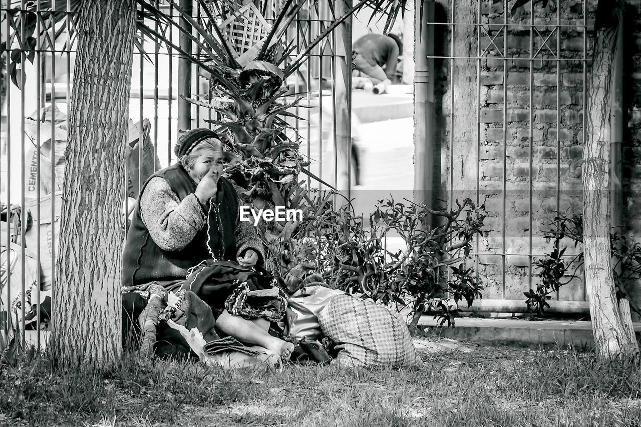 two people, togetherness, day, sitting, young men, tree, young adult, young women, plant, men, outdoors, real people, adult, grass, adults only, people