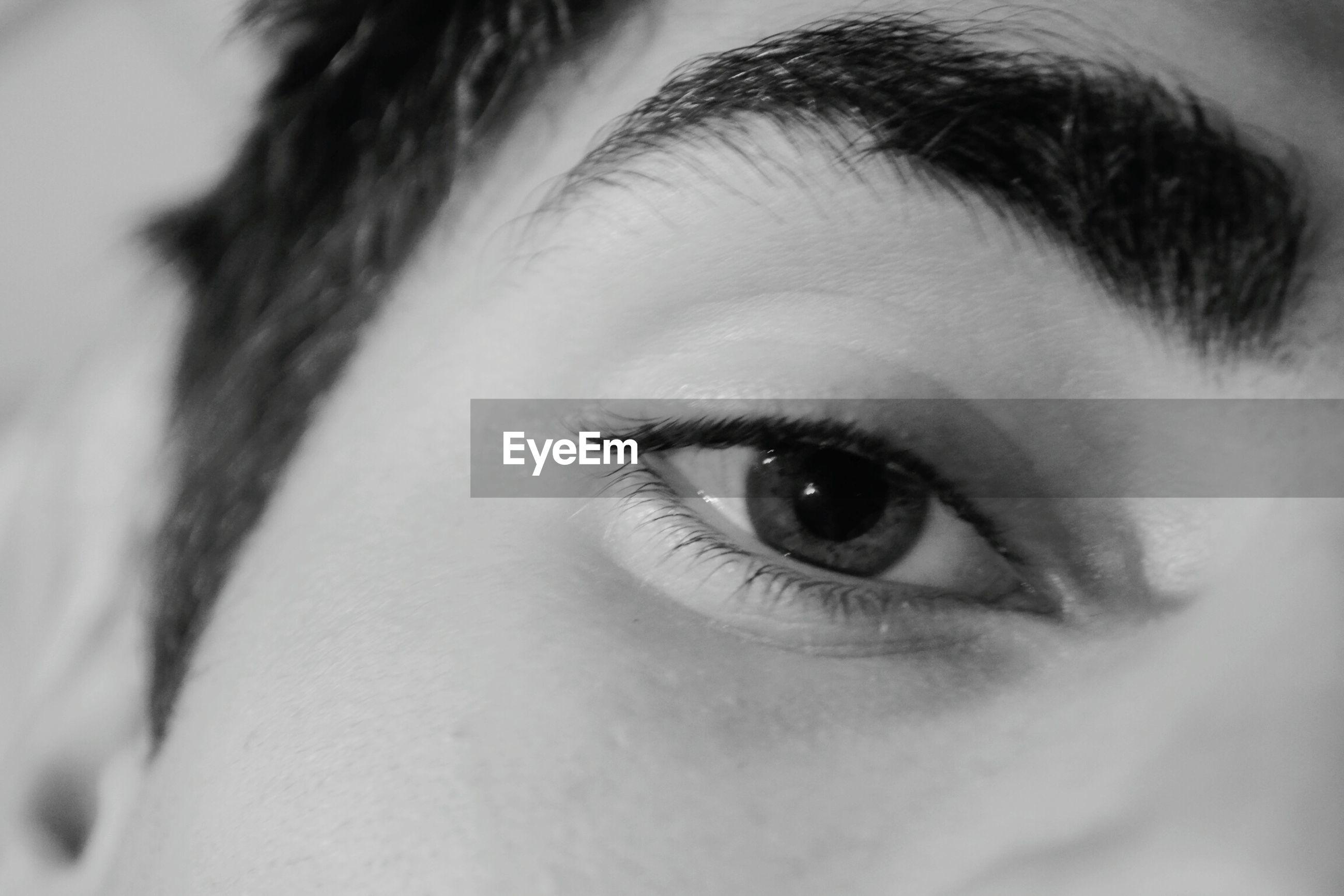 human eye, close-up, human body part, real people, looking at camera, eyelash, one person, portrait, eyesight, human skin, eyeball, eyebrow, sensory perception, women, indoors, day, young adult, adult, people