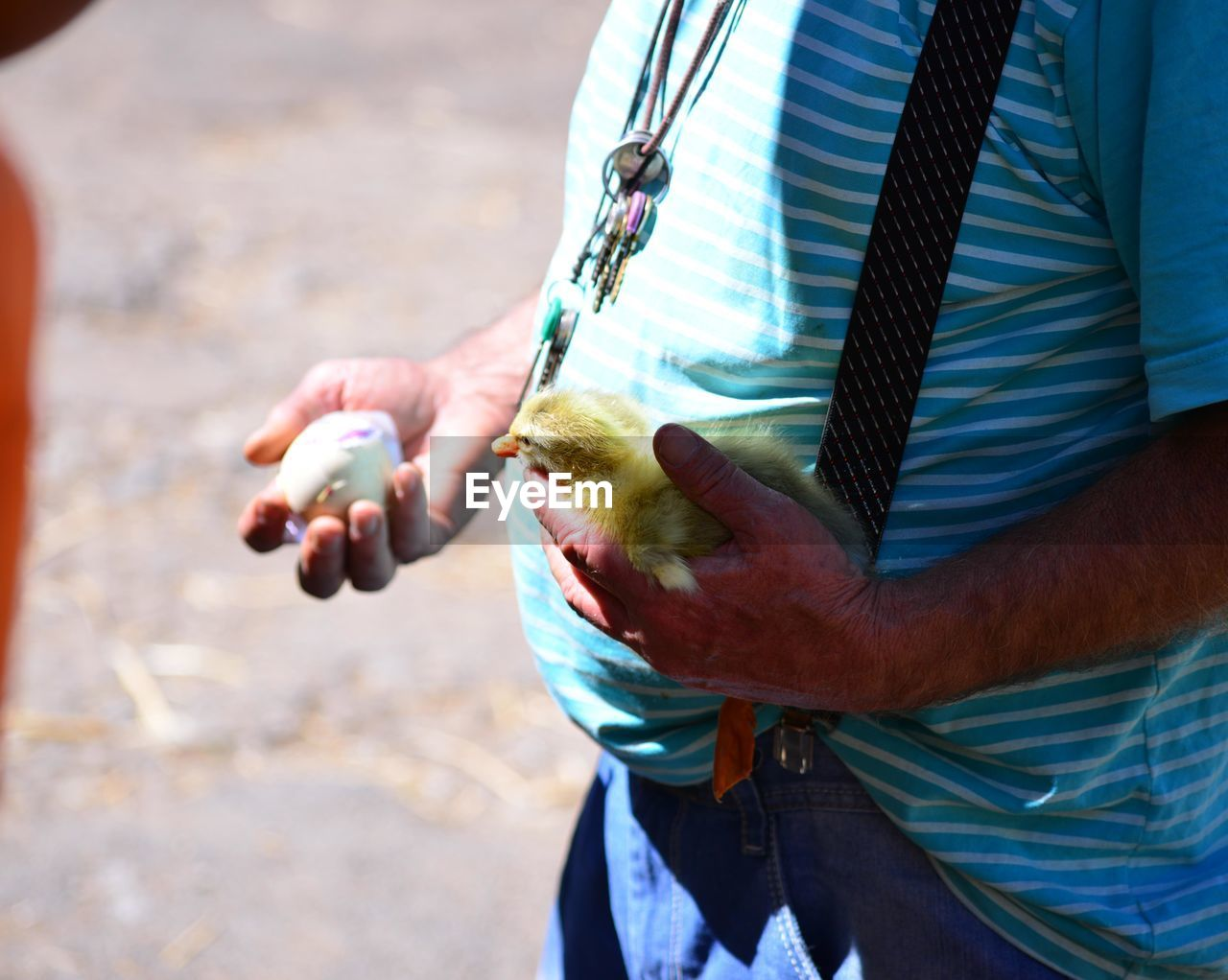 Midsection Of Man Holding Duckling And Egg