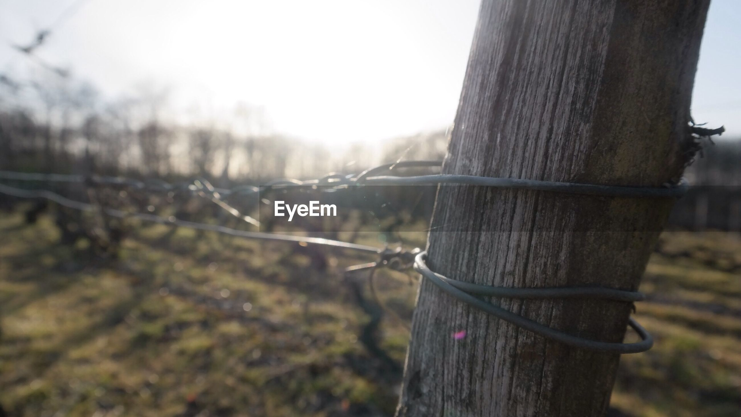 Close-up of fence on blurred countryside landscape