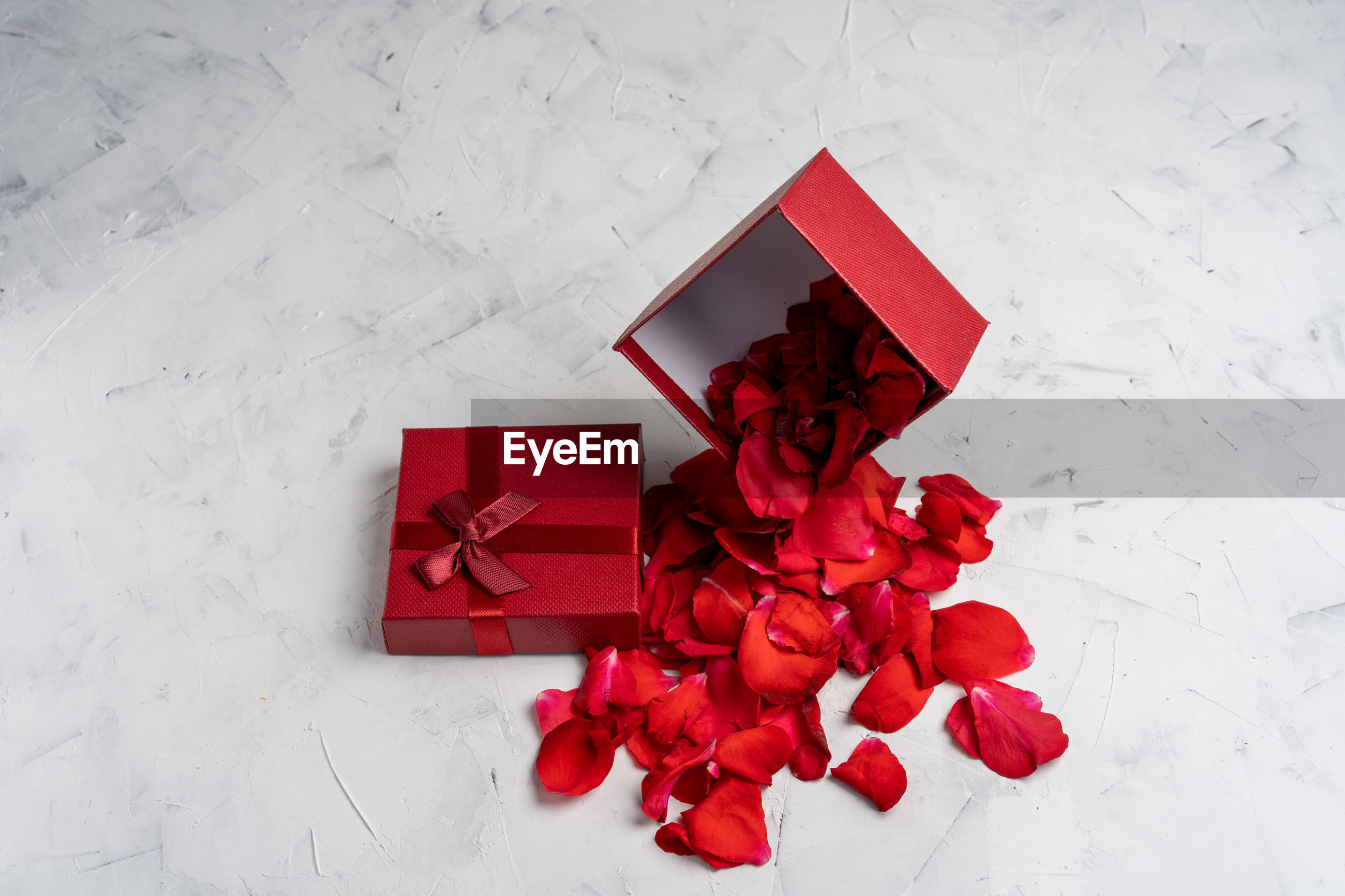 High angle view of rose petals in red box on table