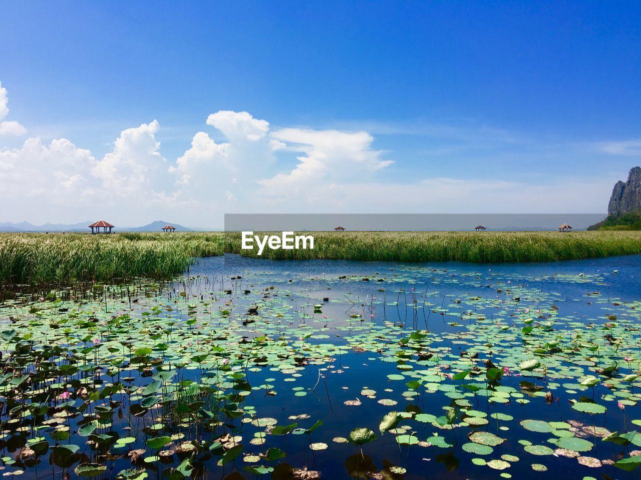 Photo taken in Ban Phu Yai, Thailand