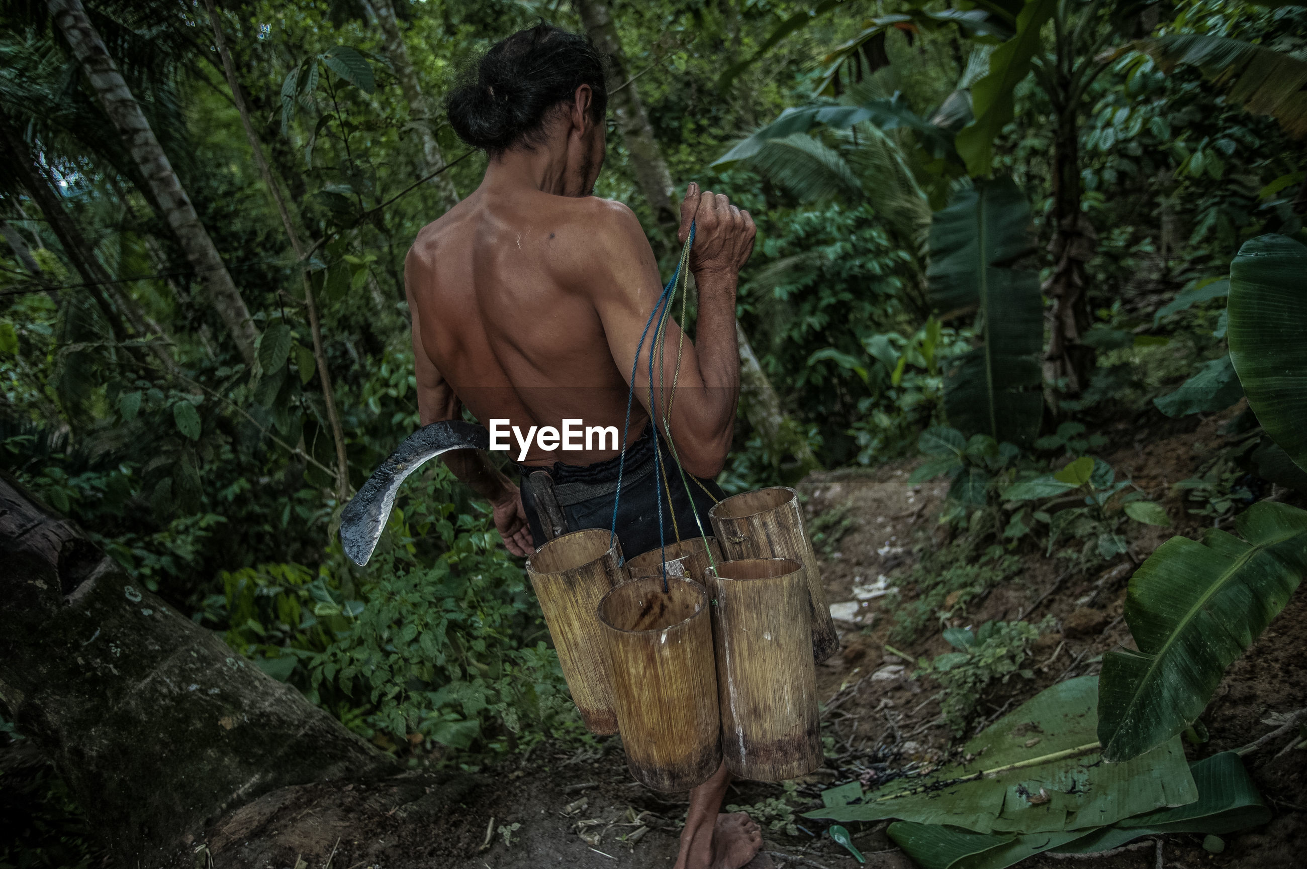 Rear view of shirtless man carrying wooden containers while walking amidst trees in forest