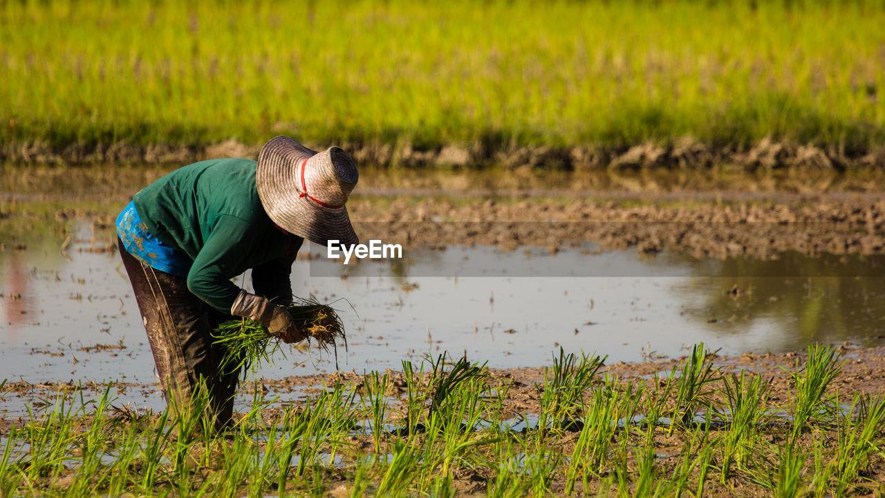 Man Working In Field