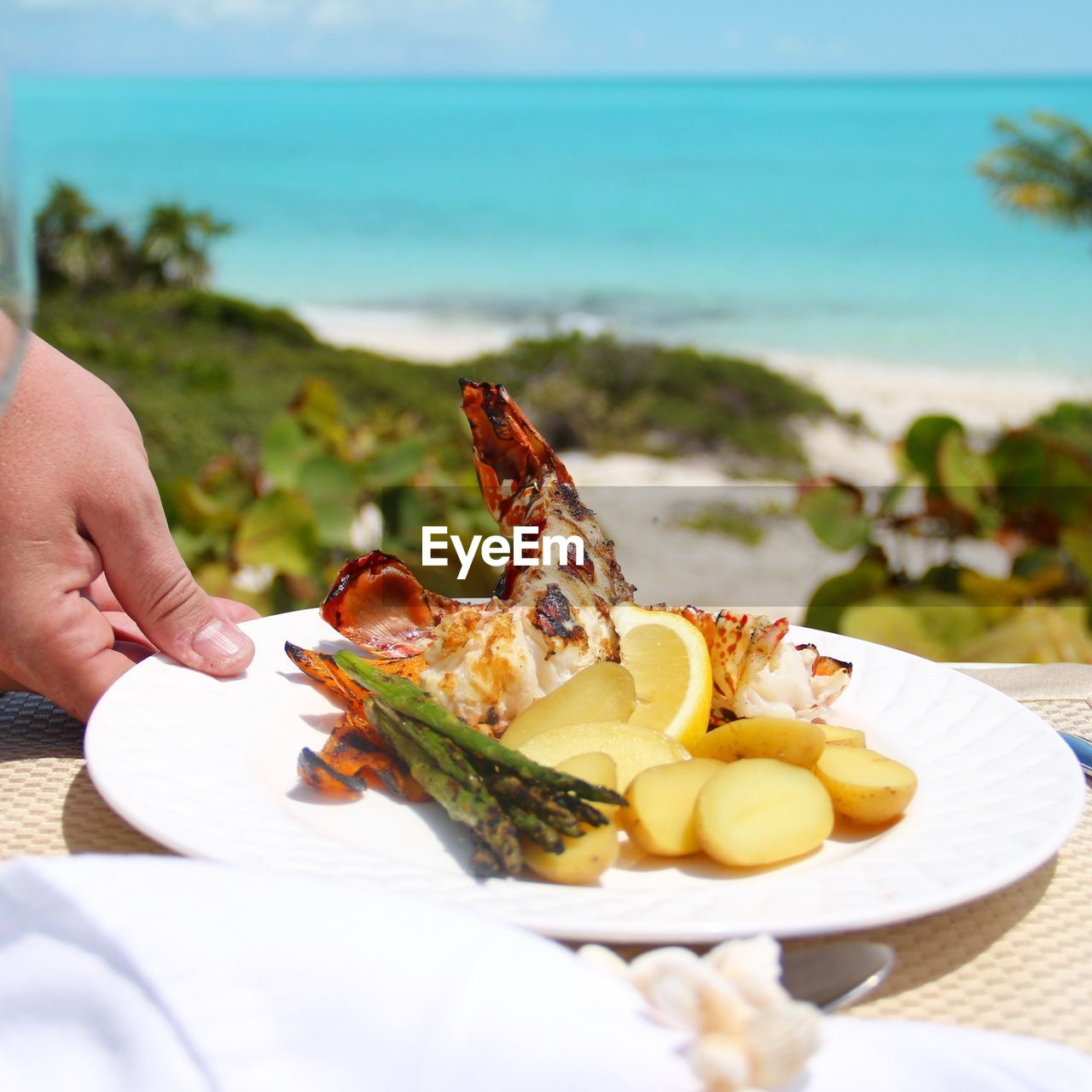 Cropped Hand Of Person Holding Lobster In Plate By Beach