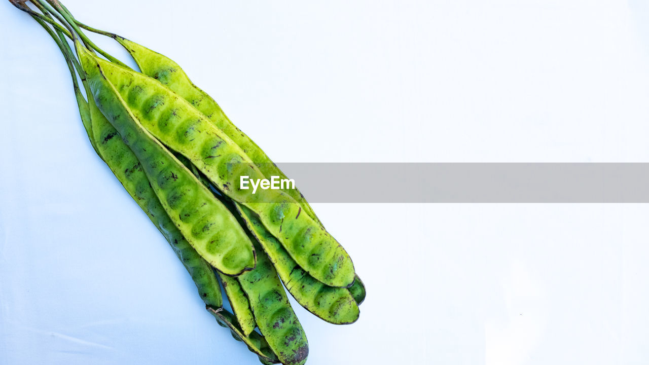 green color, studio shot, white background, copy space, close-up, freshness, no people, food and drink, healthy eating, indoors, food, wellbeing, still life, vegetable, nature, cut out, single object, high angle view, raw food, leaf
