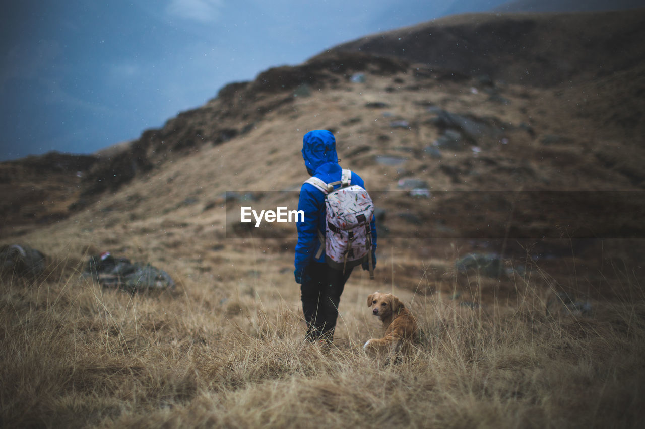 Rear View Of Person With Dog On Grassy Mountain