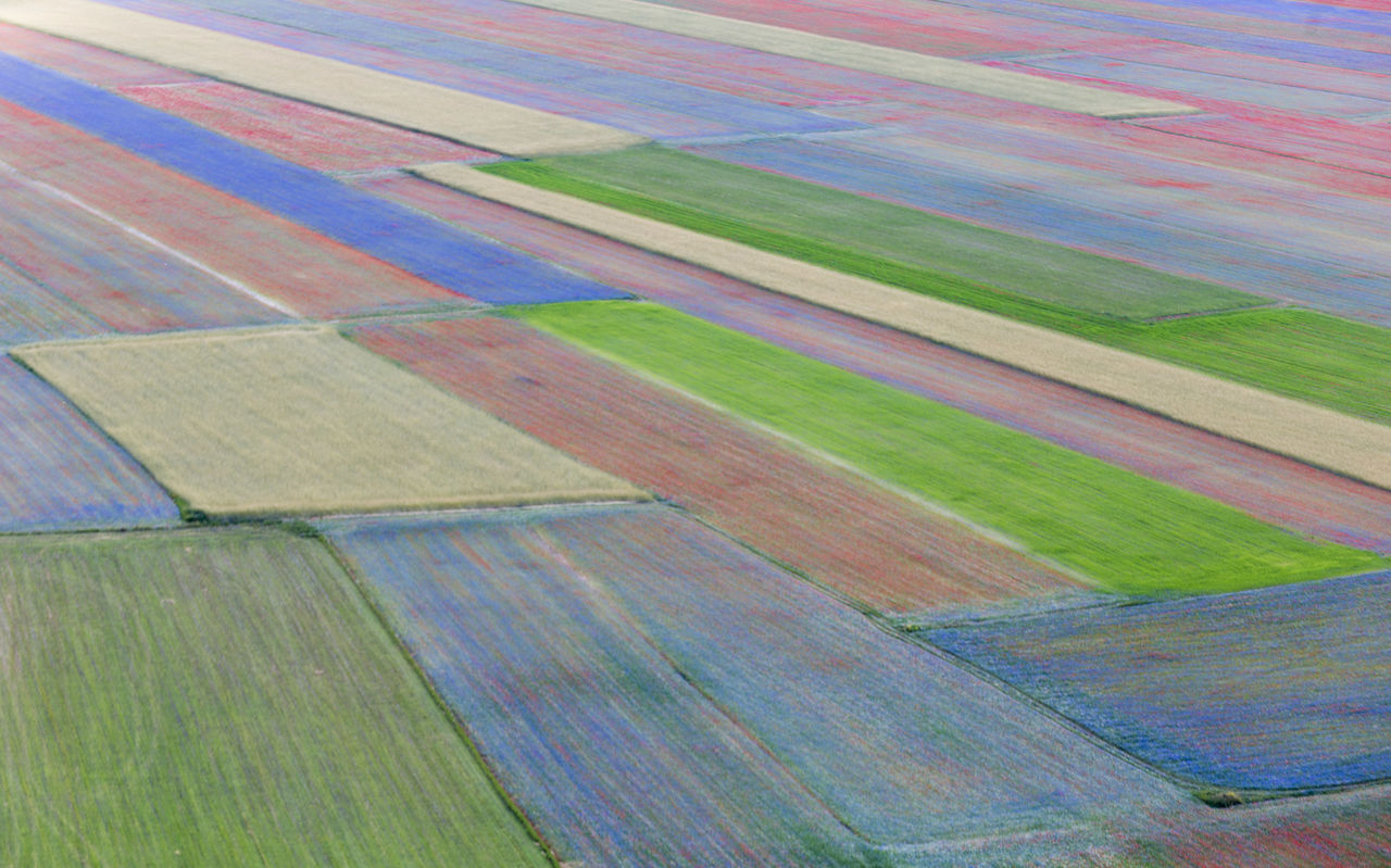backgrounds, full frame, no people, pattern, multi colored, agriculture, landscape, green color, scenics - nature, day, environment, rural scene, land, nature, field, beauty in nature, aerial view, patchwork landscape, striped, farm, outdoors, abstract