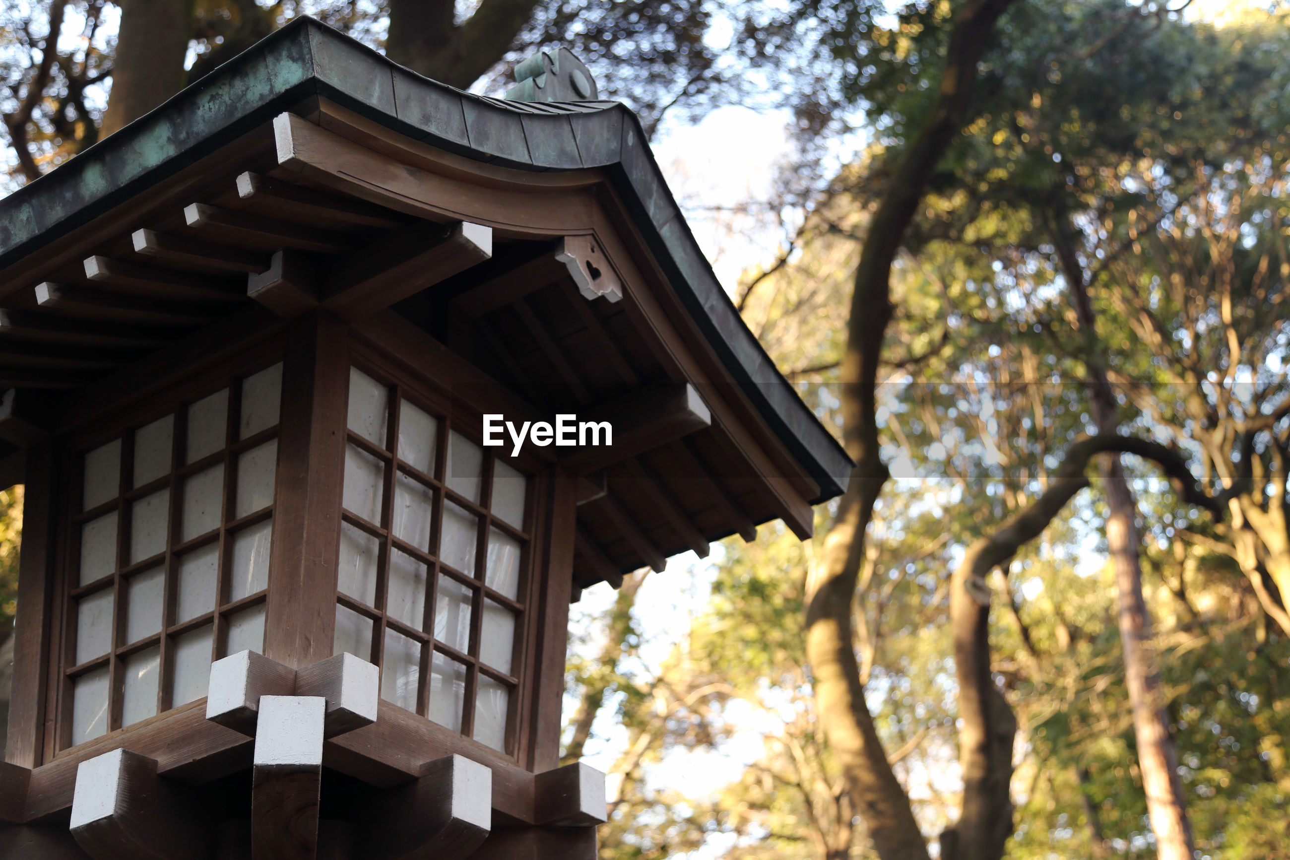 Low angle view of meiji-jingu shrine against trees