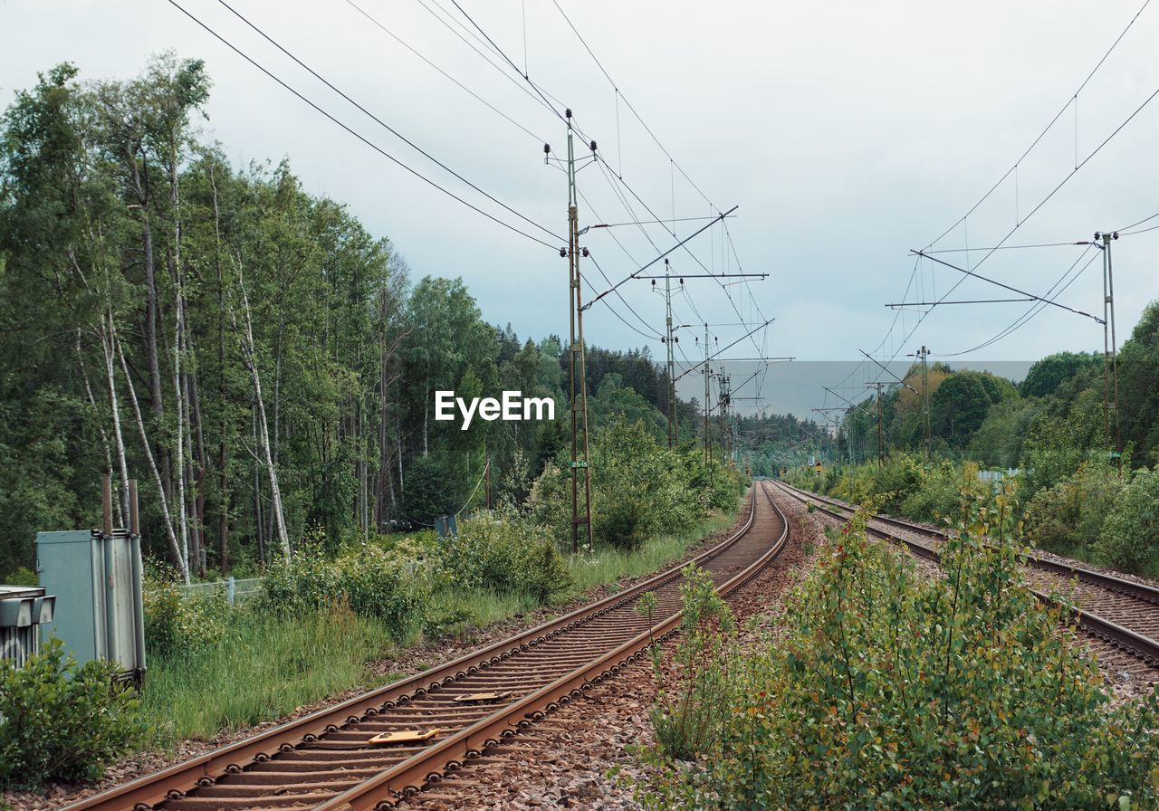 rail transportation, railroad track, track, electricity, cable, tree, transportation, plant, technology, nature, electricity pylon, connection, power line, sky, public transportation, mode of transportation, power supply, day, no people, growth, outdoors, parallel