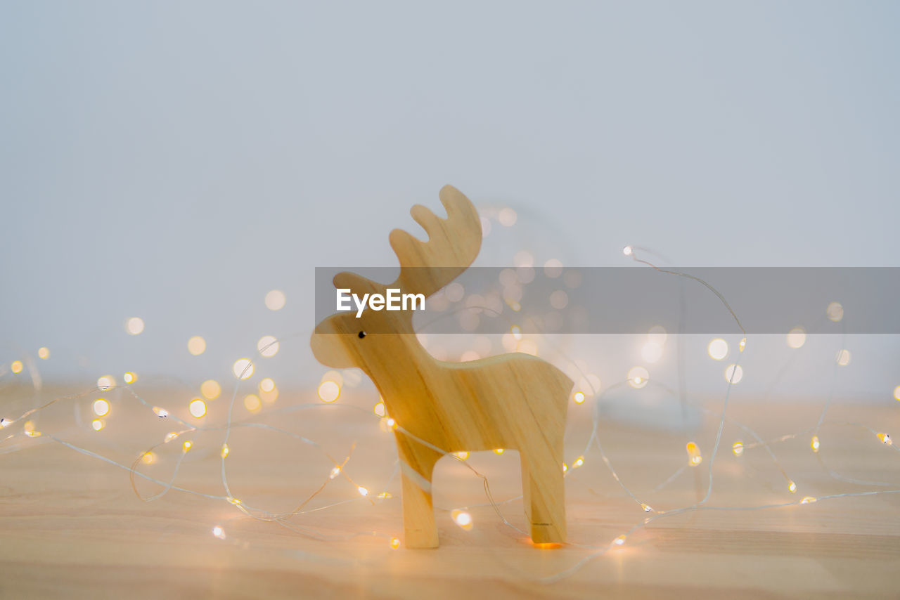 VIEW OF DEER AGAINST ILLUMINATED SKY