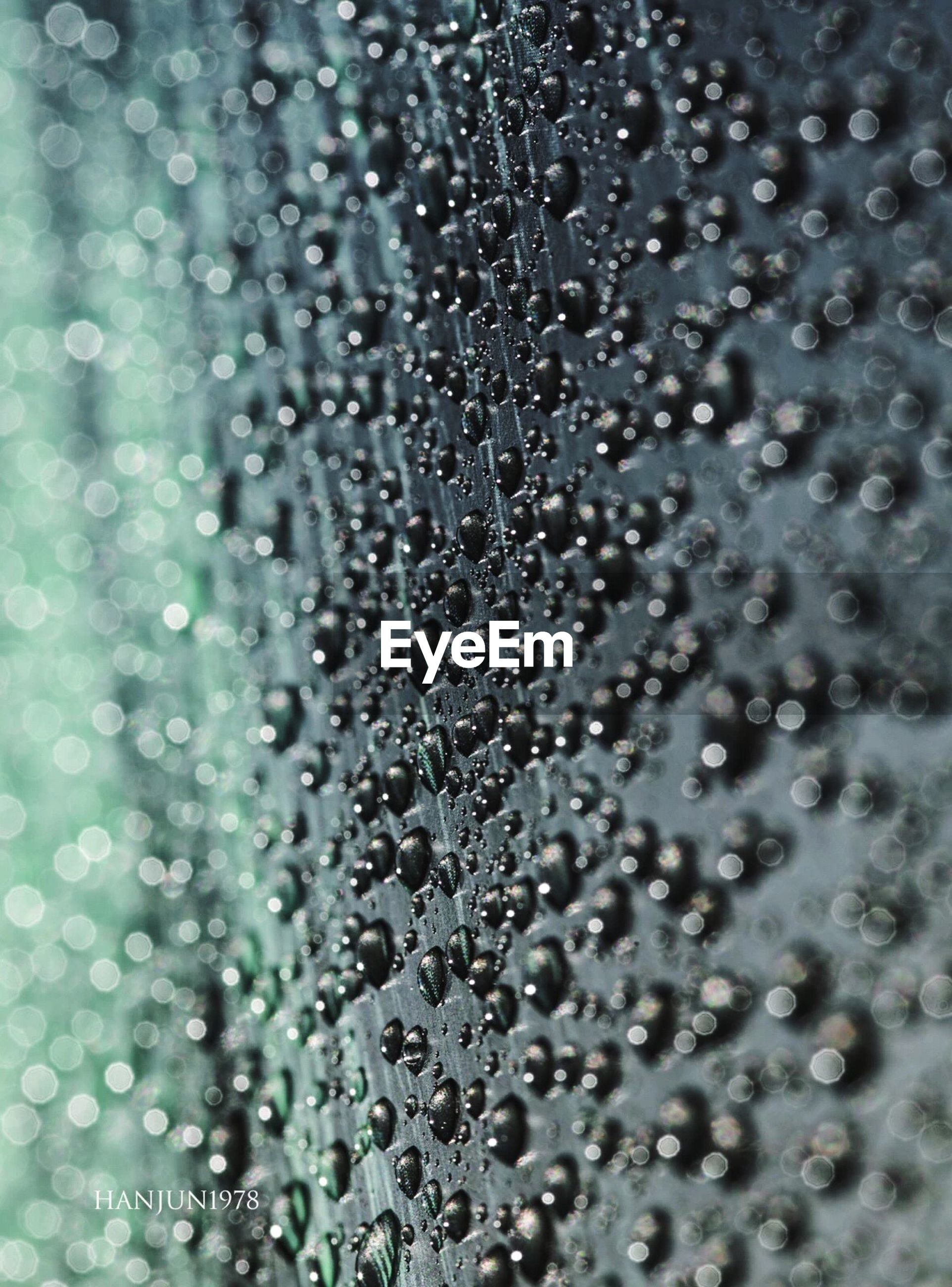 full frame, drop, water, close-up, backgrounds, no people, day, indoors, nature, beauty in nature