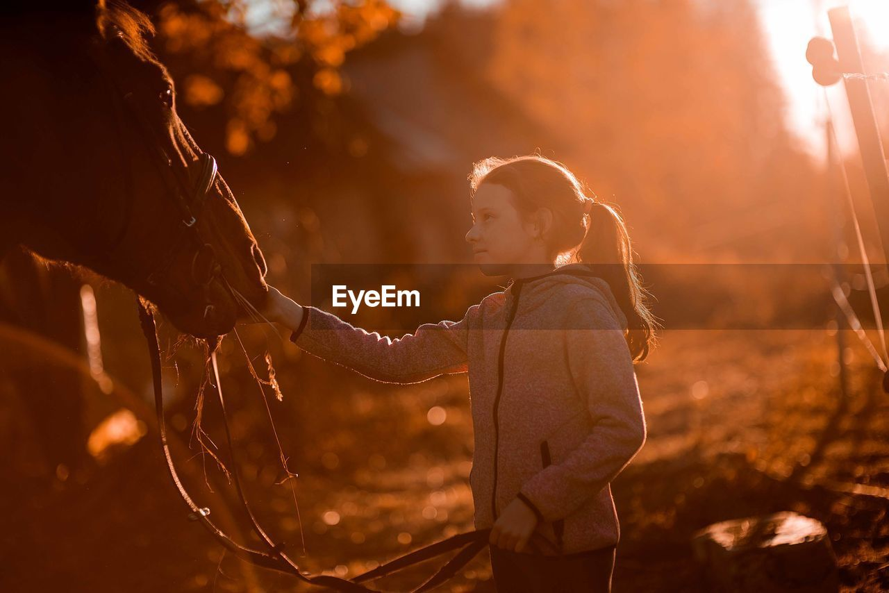 Side View Of Girl Stroking Horse While Standing In Barn During Sunset