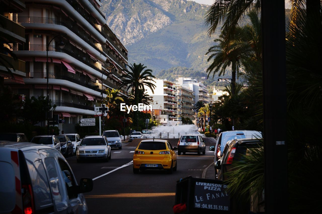 car, city, traffic, palm tree, transportation, street, land vehicle, mode of transport, architecture, built structure, tree, road, outdoors, building exterior, day, no people