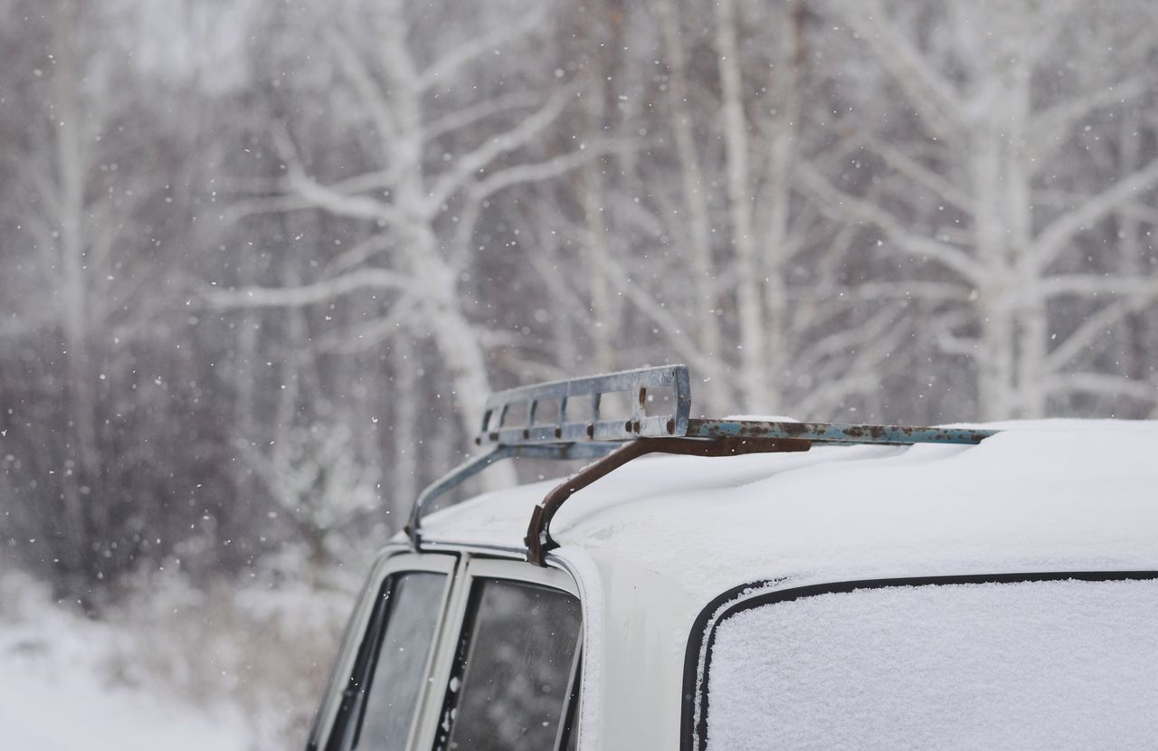 Snow covered car against trees