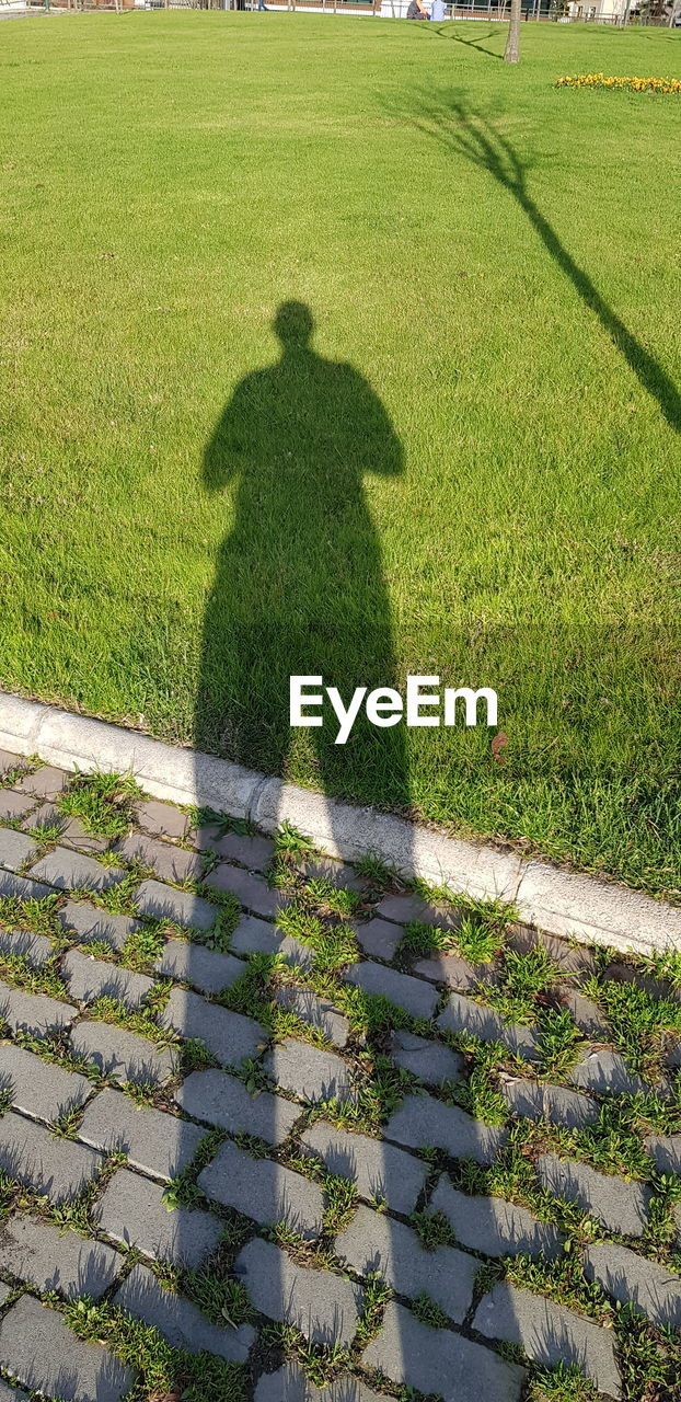 HIGH ANGLE VIEW OF MAN SHADOW ON FIELD
