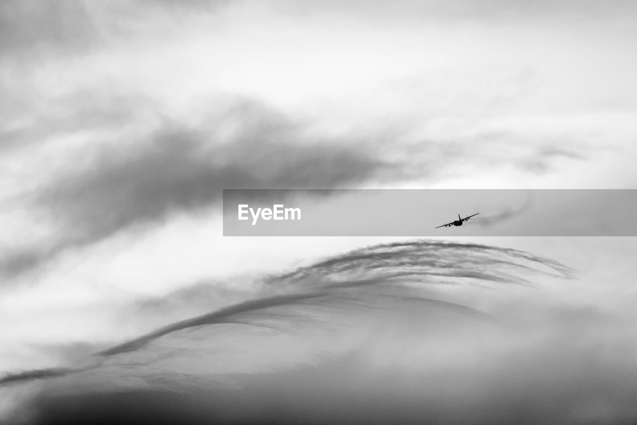 cloud - sky, animal, animal wildlife, flying, sky, animals in the wild, one animal, animal themes, bird, nature, vertebrate, low angle view, no people, selective focus, mid-air, day, air vehicle, airplane, silhouette, outdoors